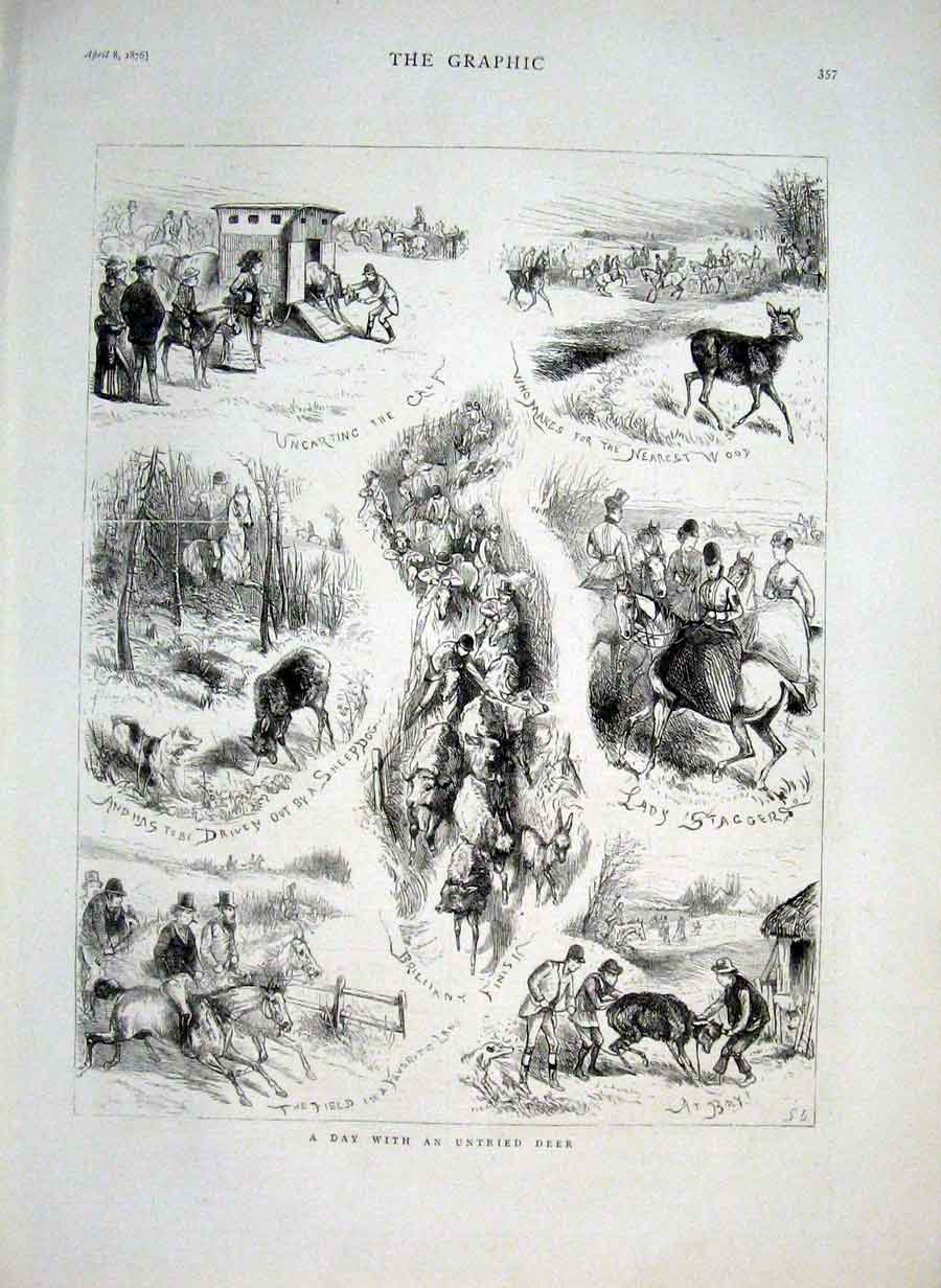 Print Stag Hounds With Untried Deer 1876 Huntin 57Bbb0 Old Original