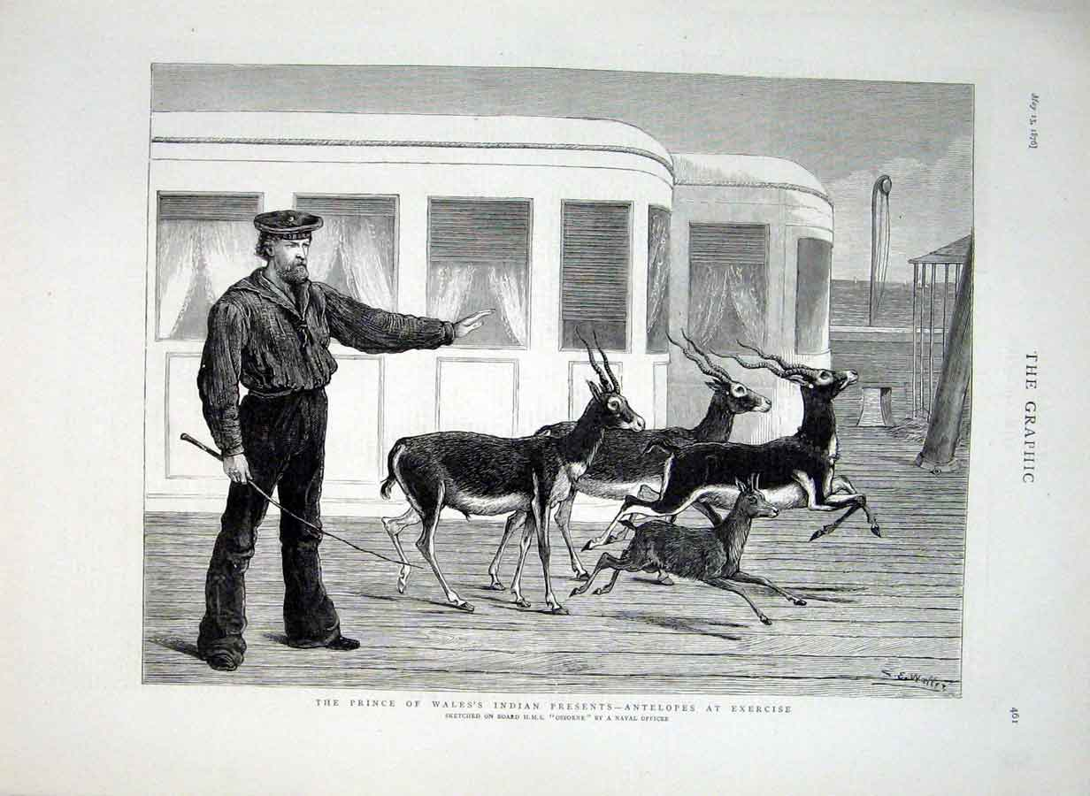 Print Antelopes At Exercise At Sea 1876 61Bbb0 Old Original