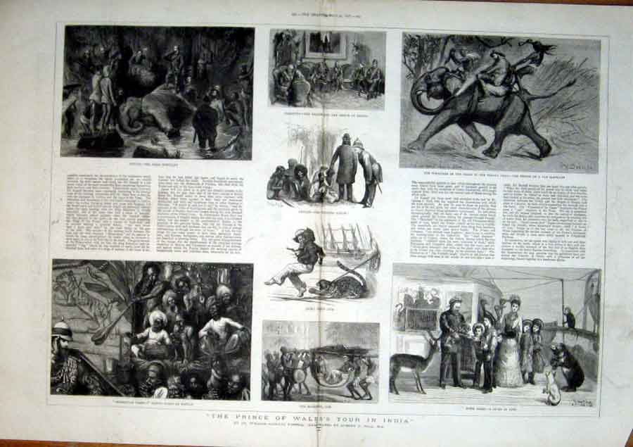 Print Prince Wales Tour India 1877 95Tbbb0 Old Original