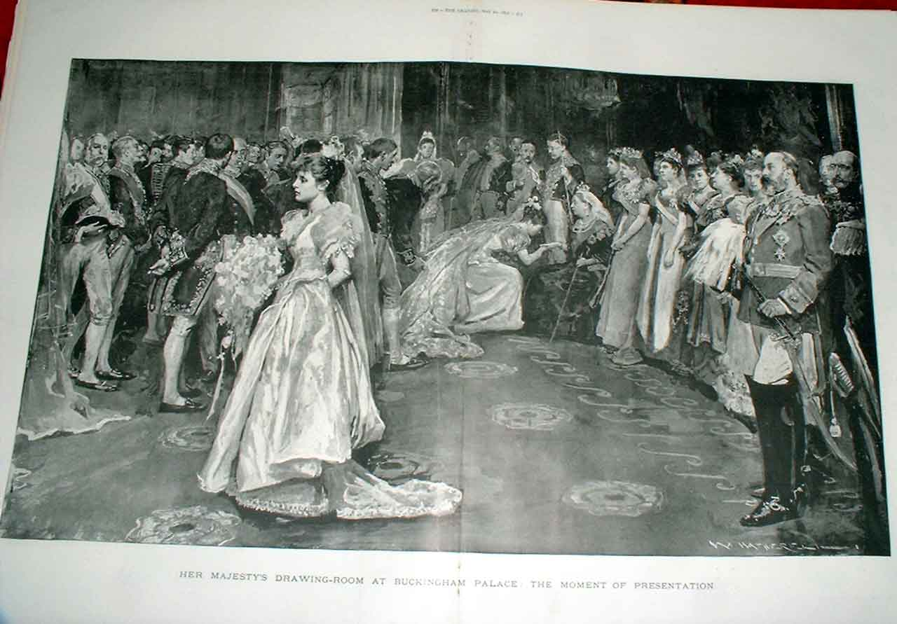 [Print Debutante Presentation Drawing Room Buckingham Palace 71Tbbb0 Old Original]