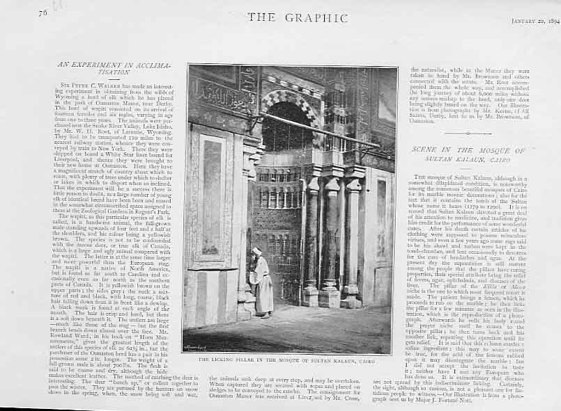Print Licking Pillar Mosque Sultan Kalaun Caira 1894 Egypt 76Ubbb0 Old Original