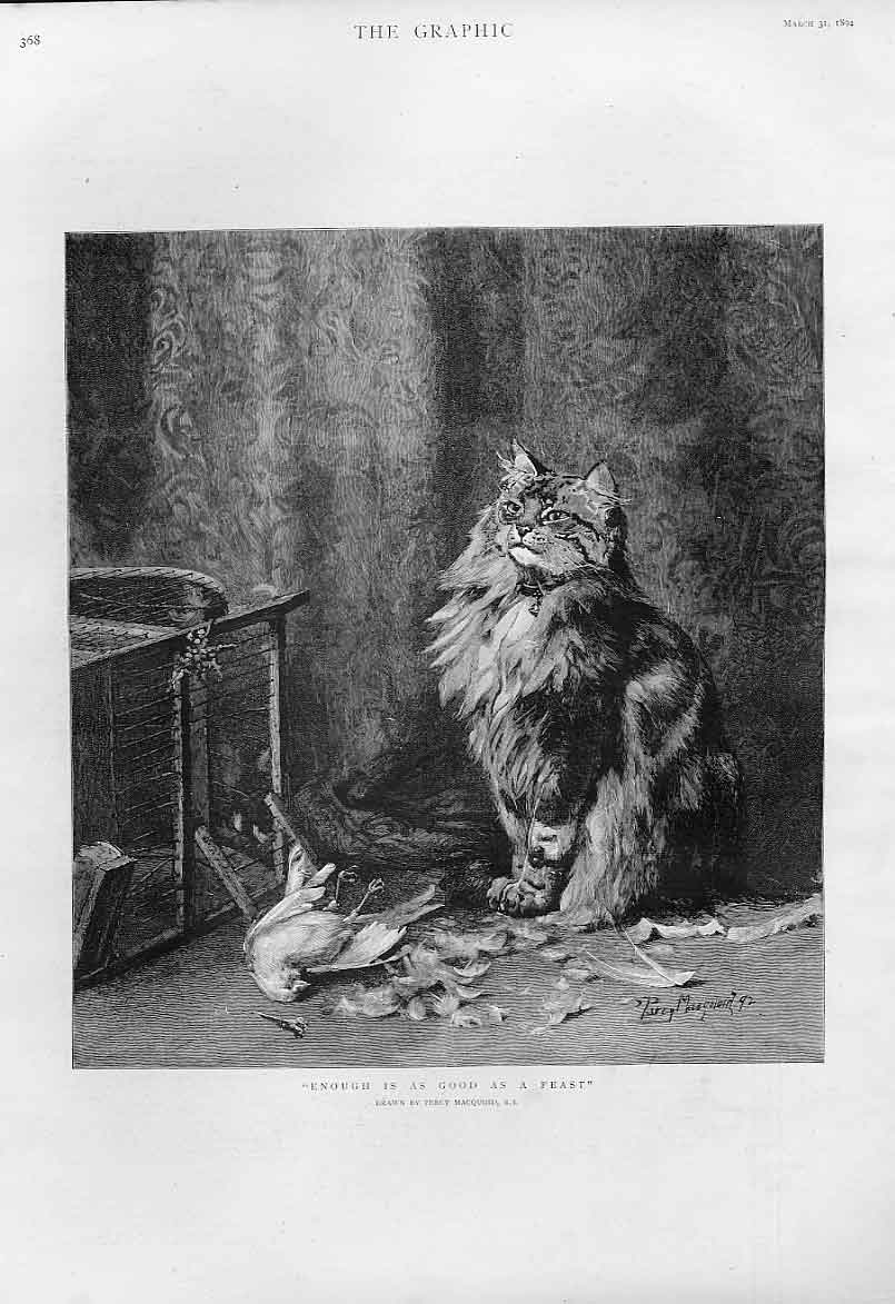 Print Cat Has A Feast Fine Art By Macquoid 1894 68Bbb0 Old Original