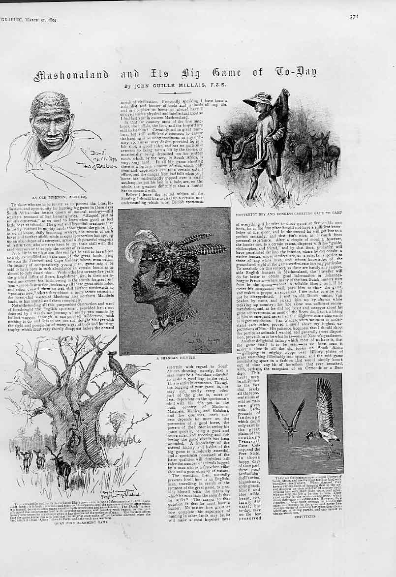 Print Mashonaland & Big Game 1894 1894 17 Pictures 71Abbb0 Old Original