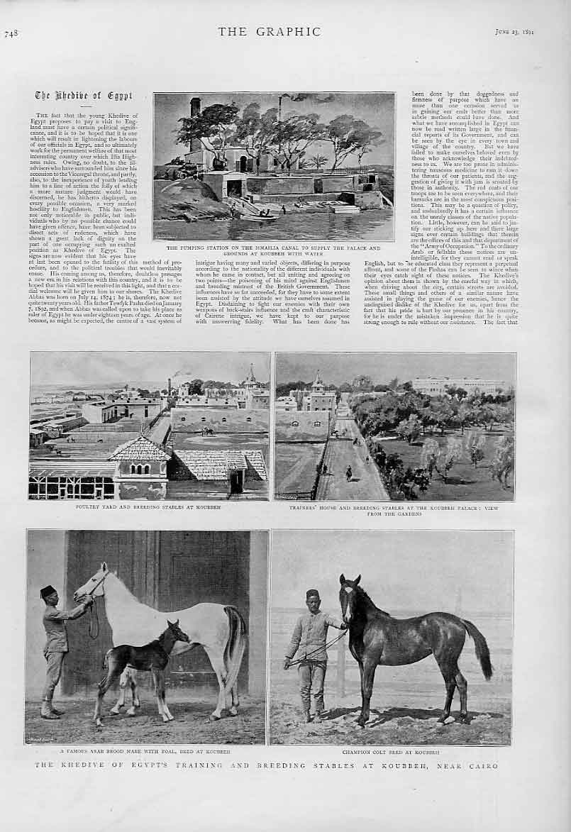 [Print Khedive Training Breeding Stable Cairo Egypt 1894 Horse 48Bbb0 Old Original]