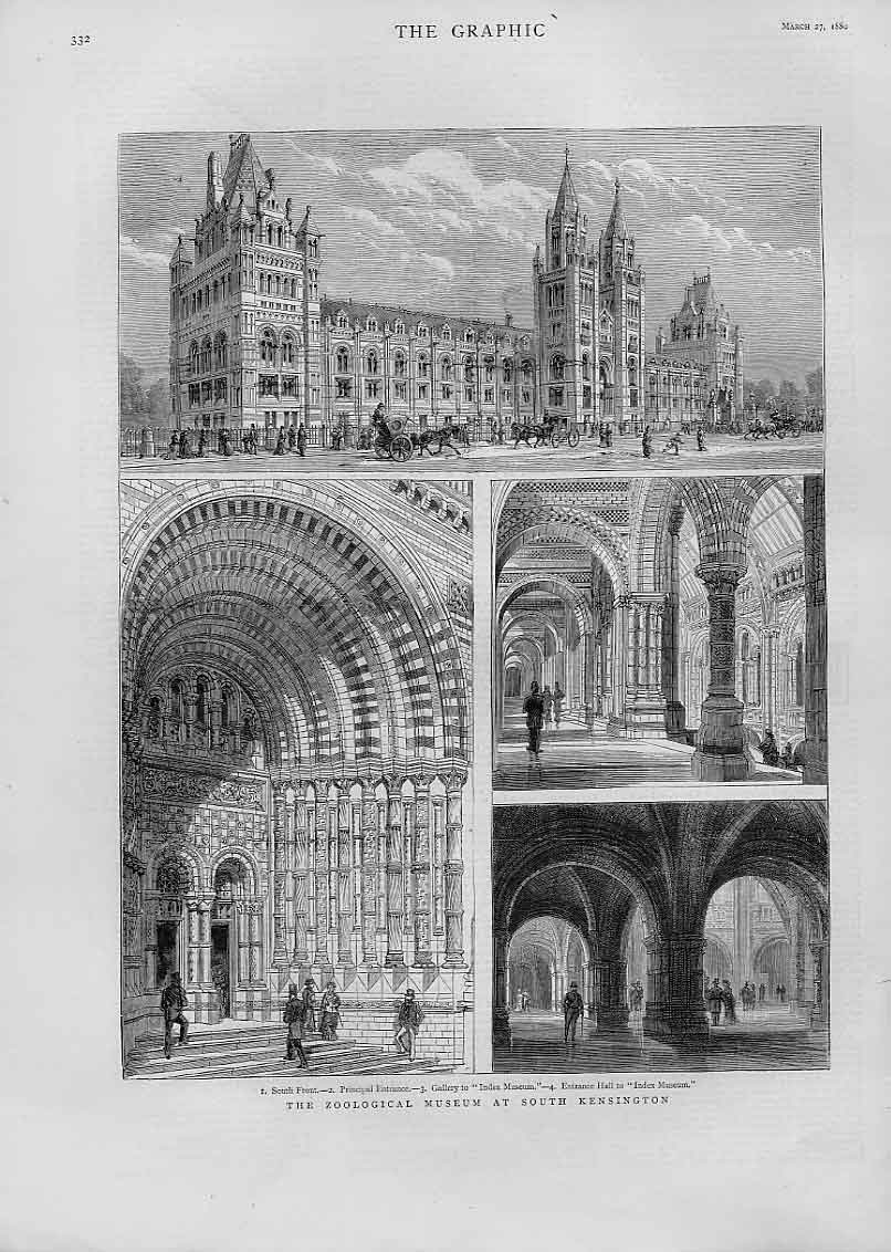 Print Zoological Museum South Kensington 1880 32Bbb1 Old Original