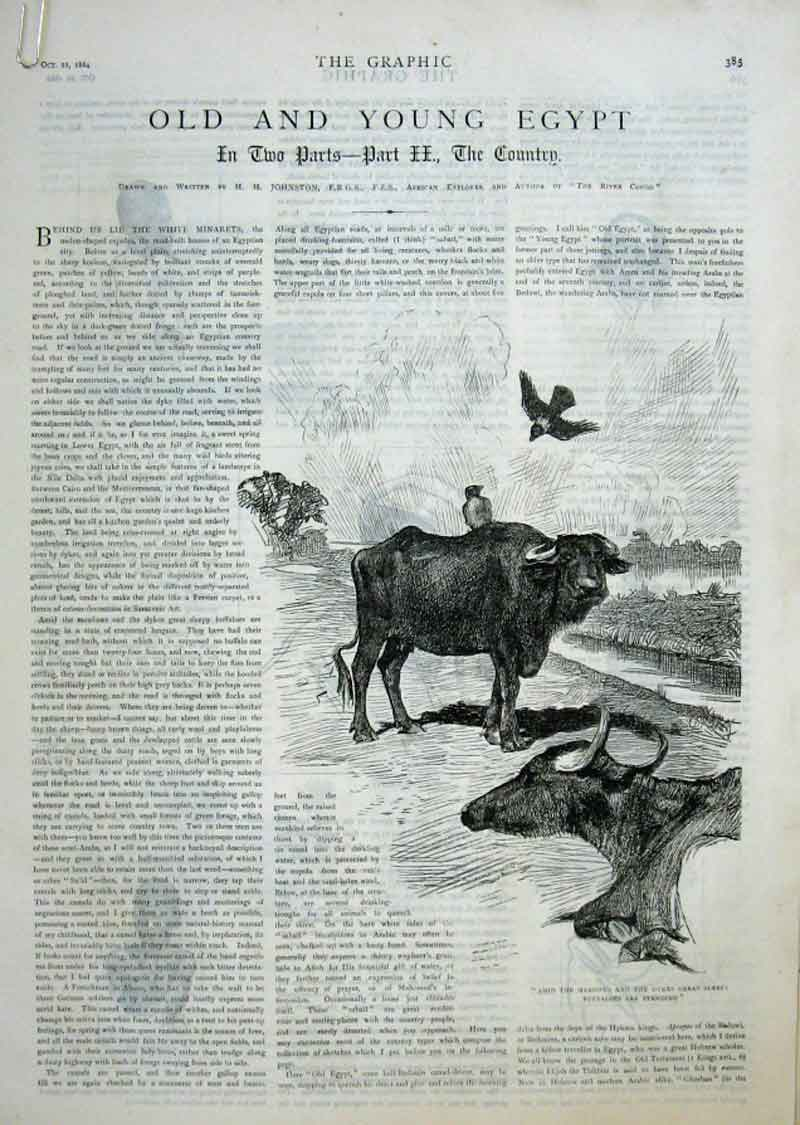 Print & Young Egypt 1884 85Abbb1 Old Original