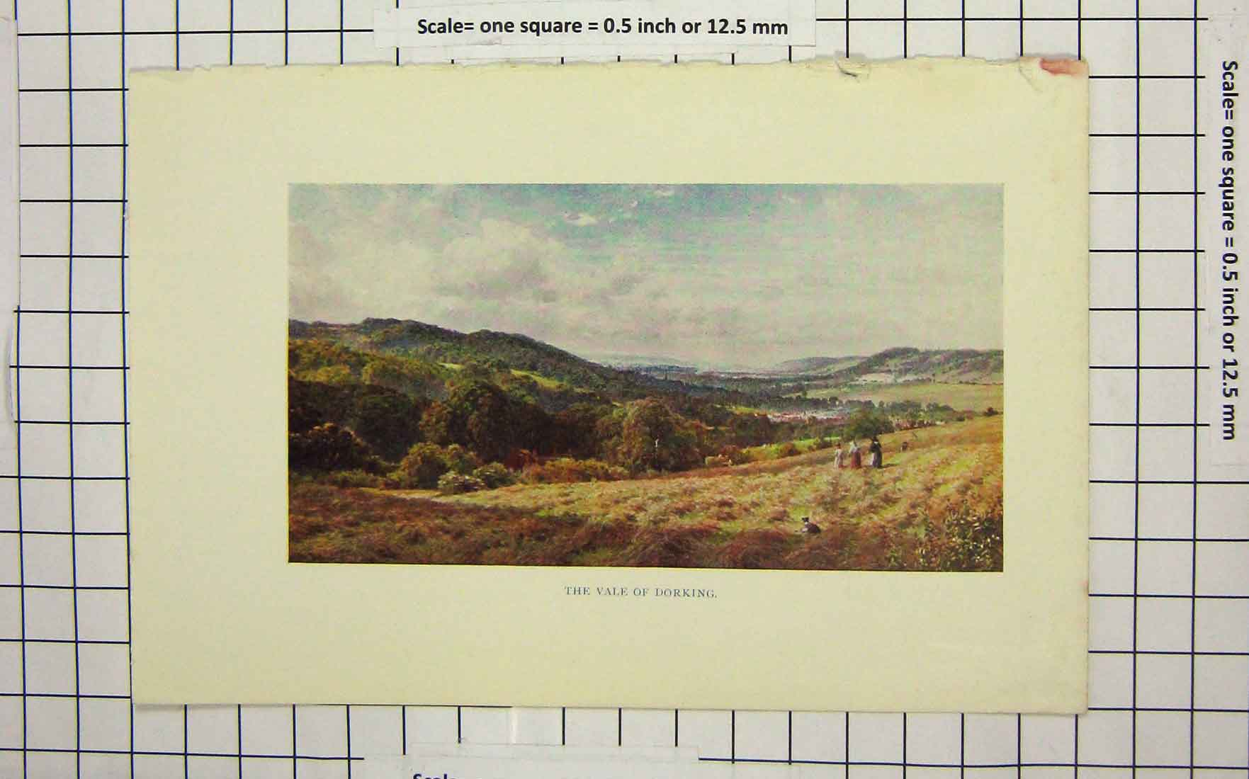 Print Colour View Hay Fields Vale Dorking England 130G188 Old Original