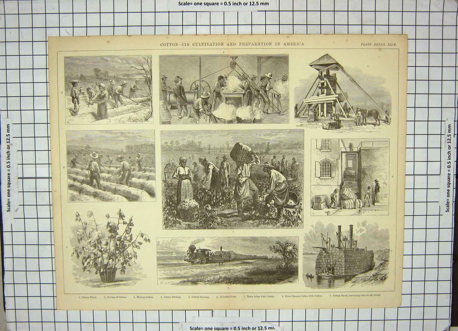 [Print Cotton Cultivation America Train Industry Steamer Boat 165G190 Old Original]