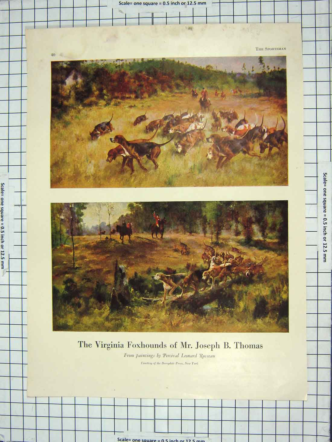 [Print Virginia Foxhounds Hunting Dogs Geese Birds 169Rg202 Old Original]