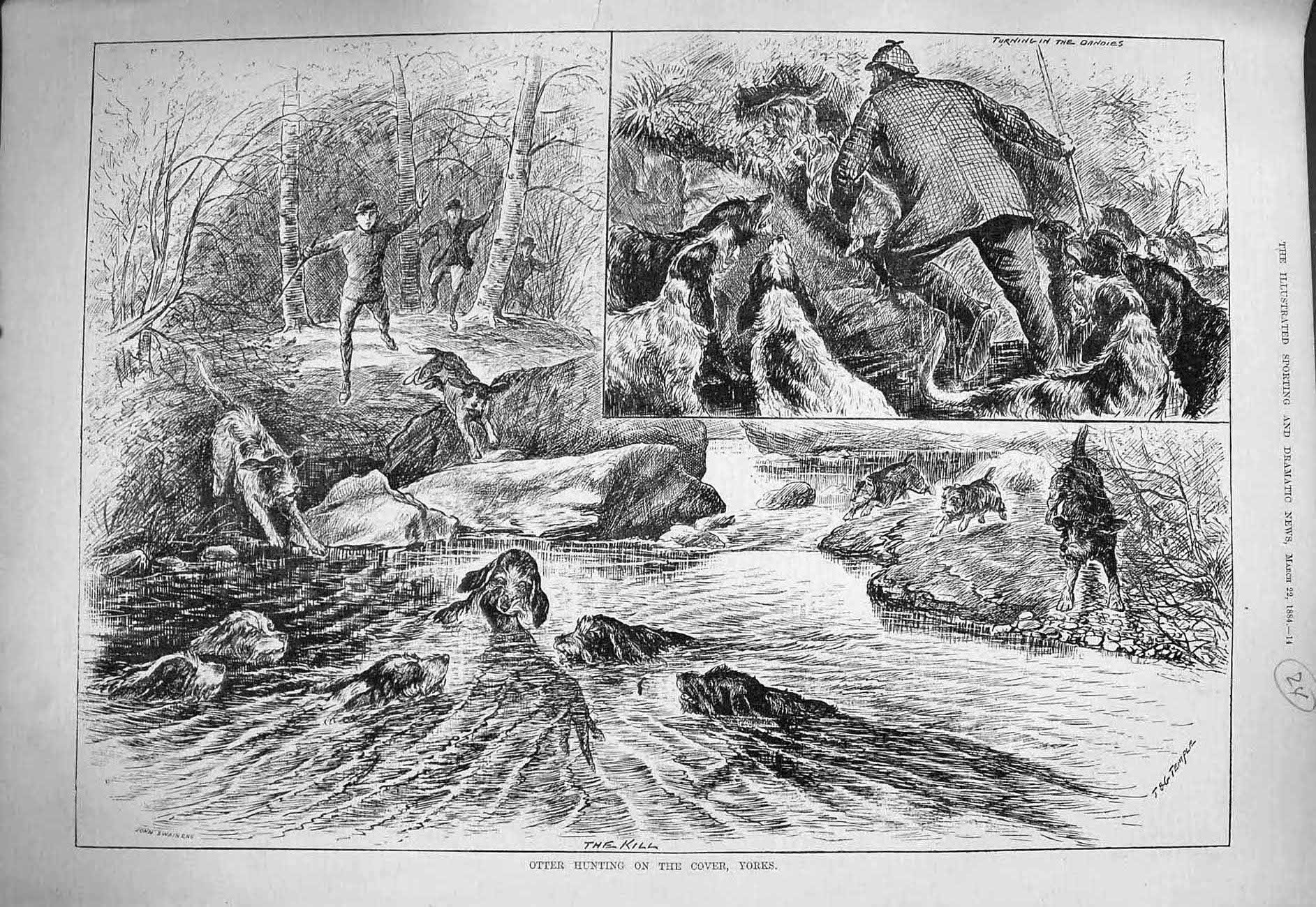 [Print 1884 Otter Hunting Cover Yorkshire Dogs River Danoies 014G275 Old Original]