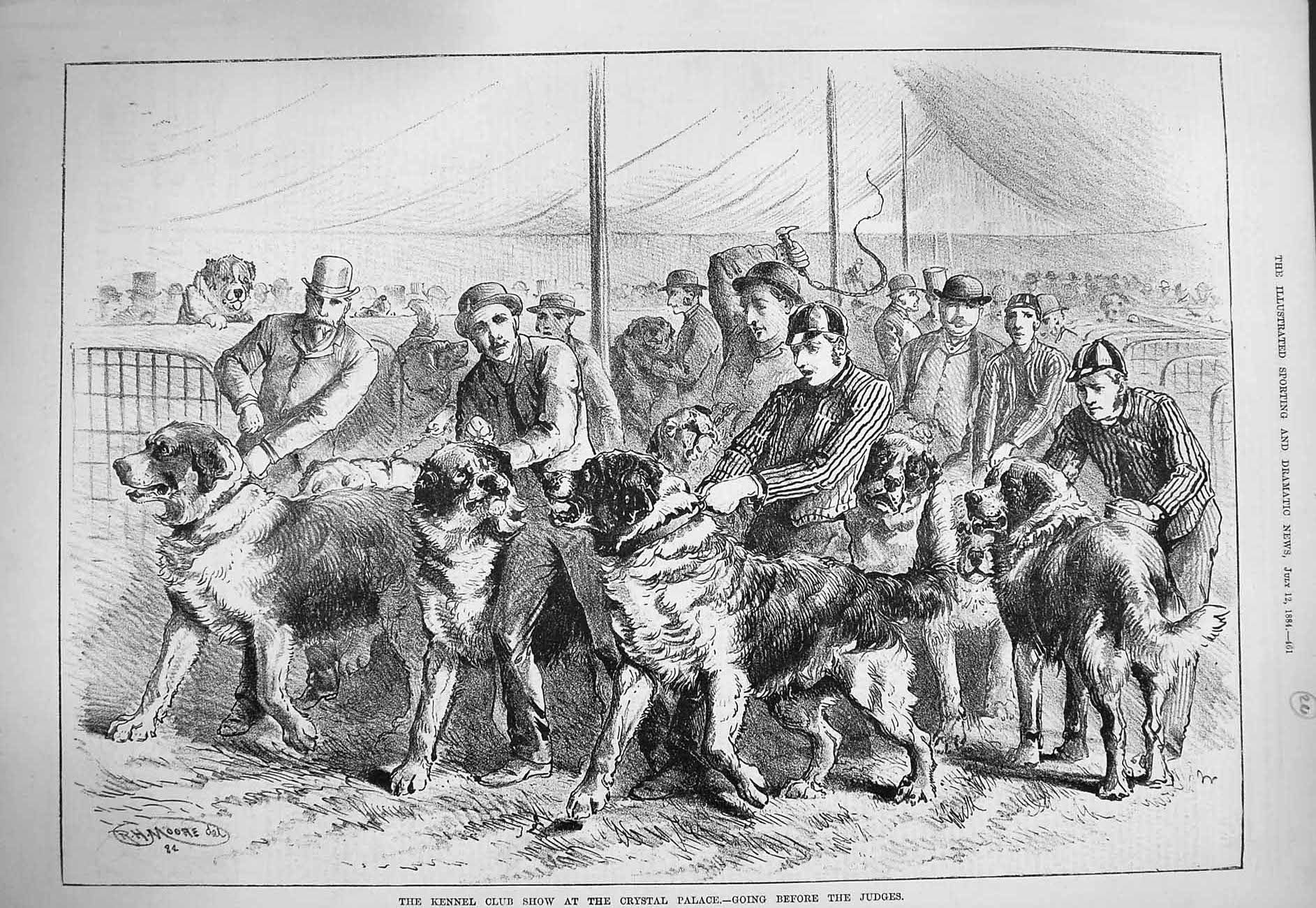[Print 1884 Kennel Club Show Crystal Palace Dogs Judges 461G275 Old Original]