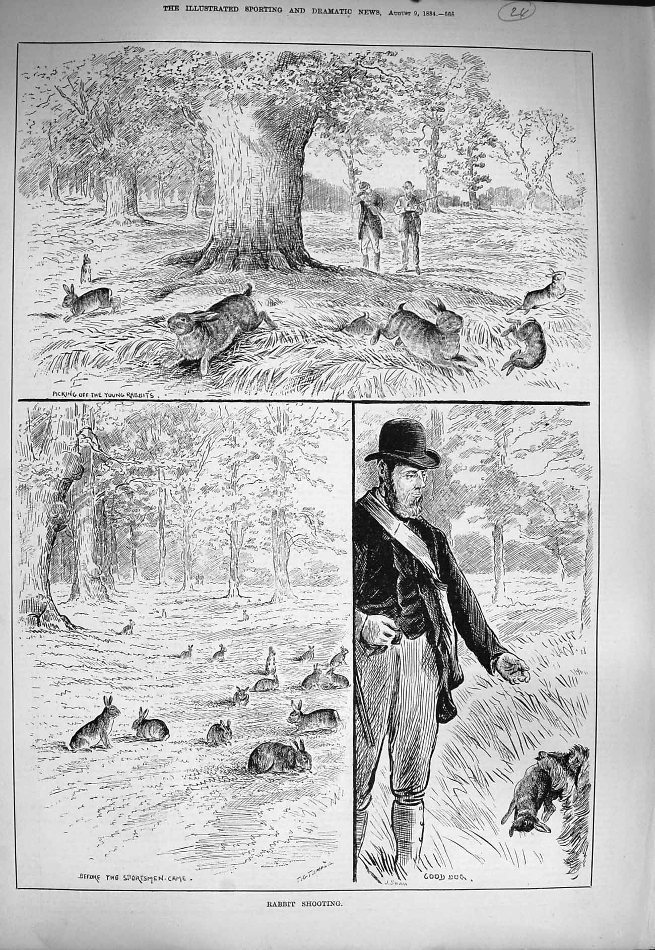 [Print 1884 Rabbit Shooting Hunting Dogs Sportsmen Country 568G275 Old Original]
