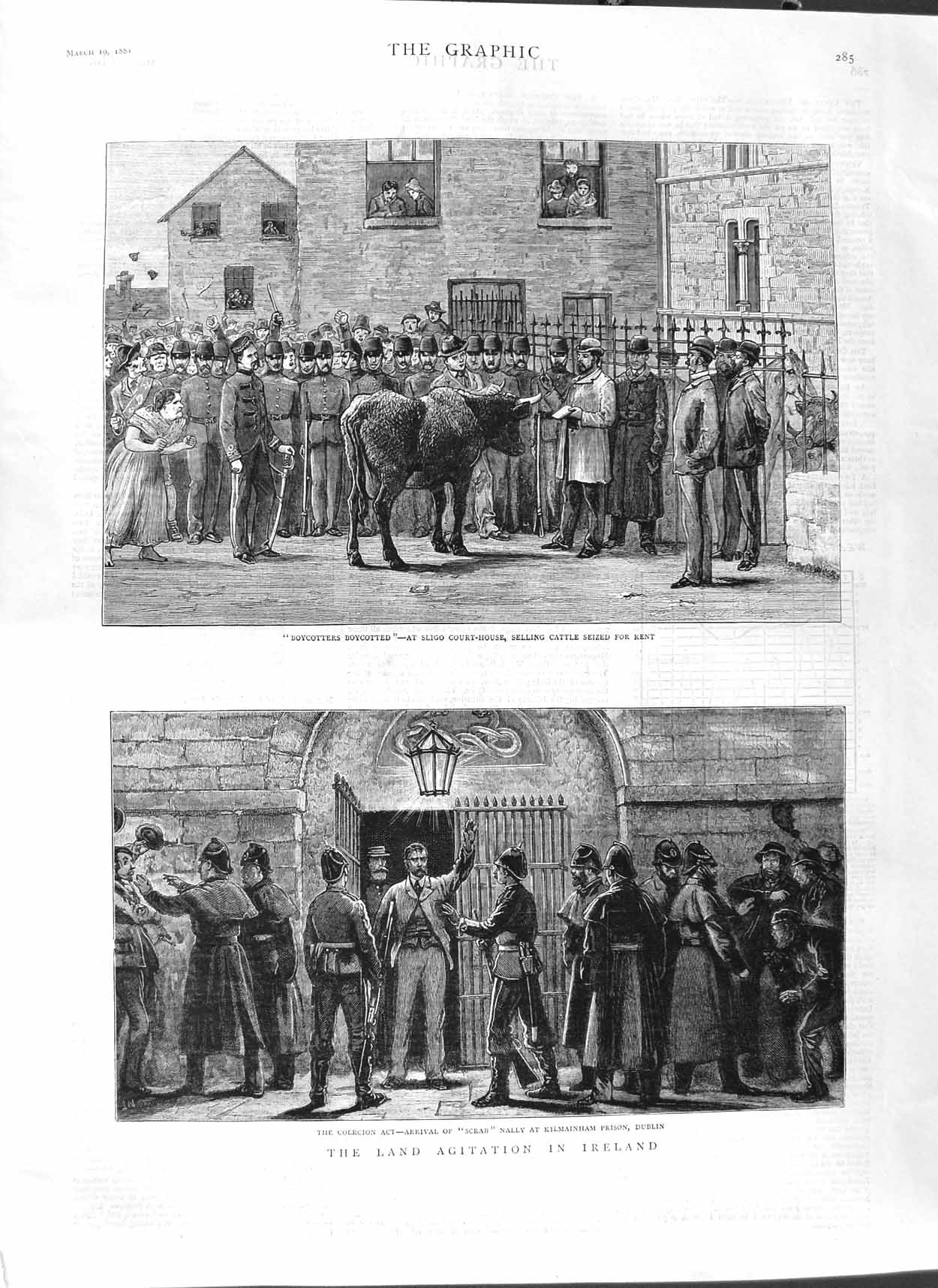 [Print 1881 Land Agitation Ireland Kilmainham Prison Cattle 285M123 Old Original]