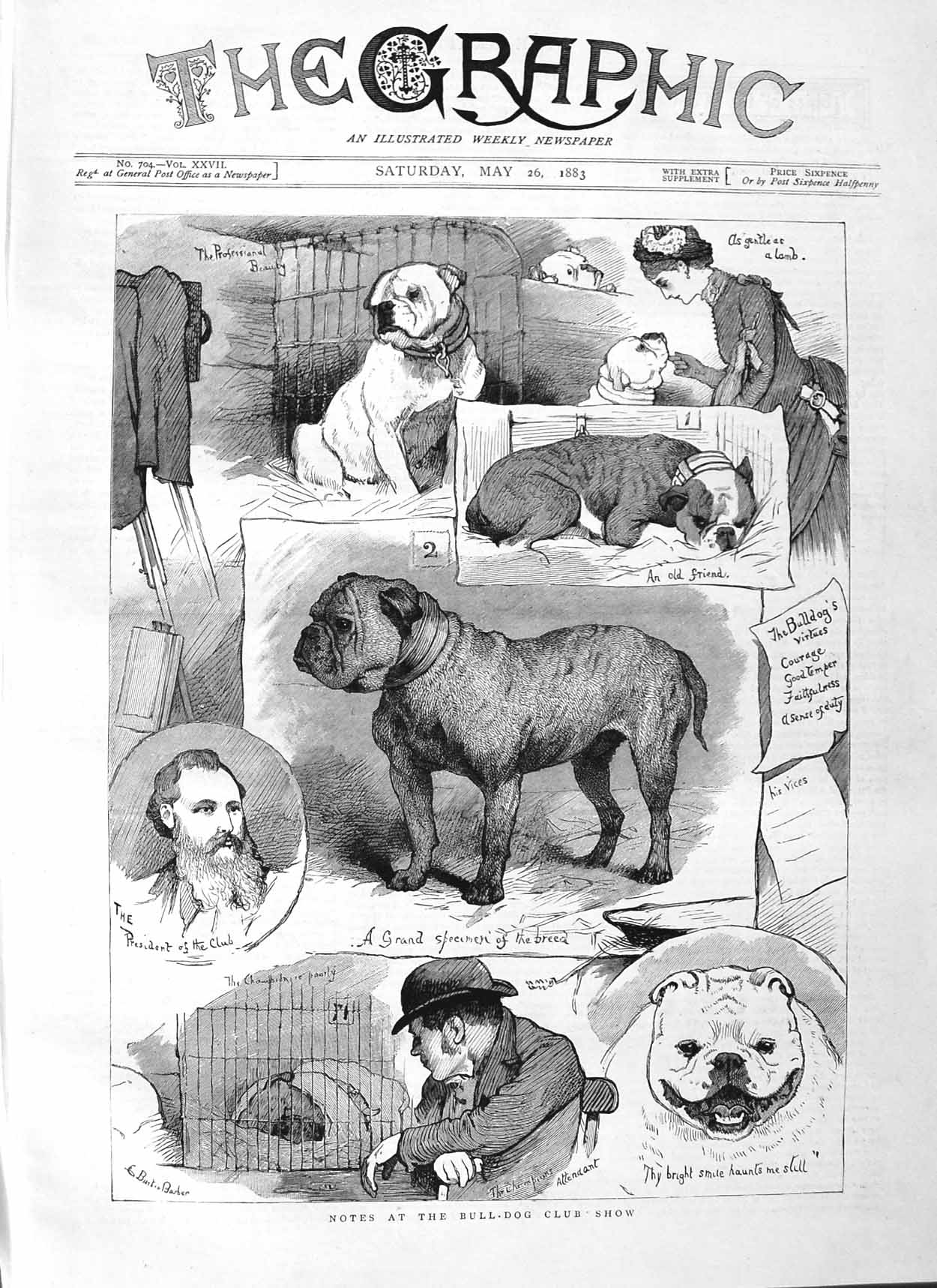 [Print 1883 Bull Dog Show Animals Pets President  Old Original]