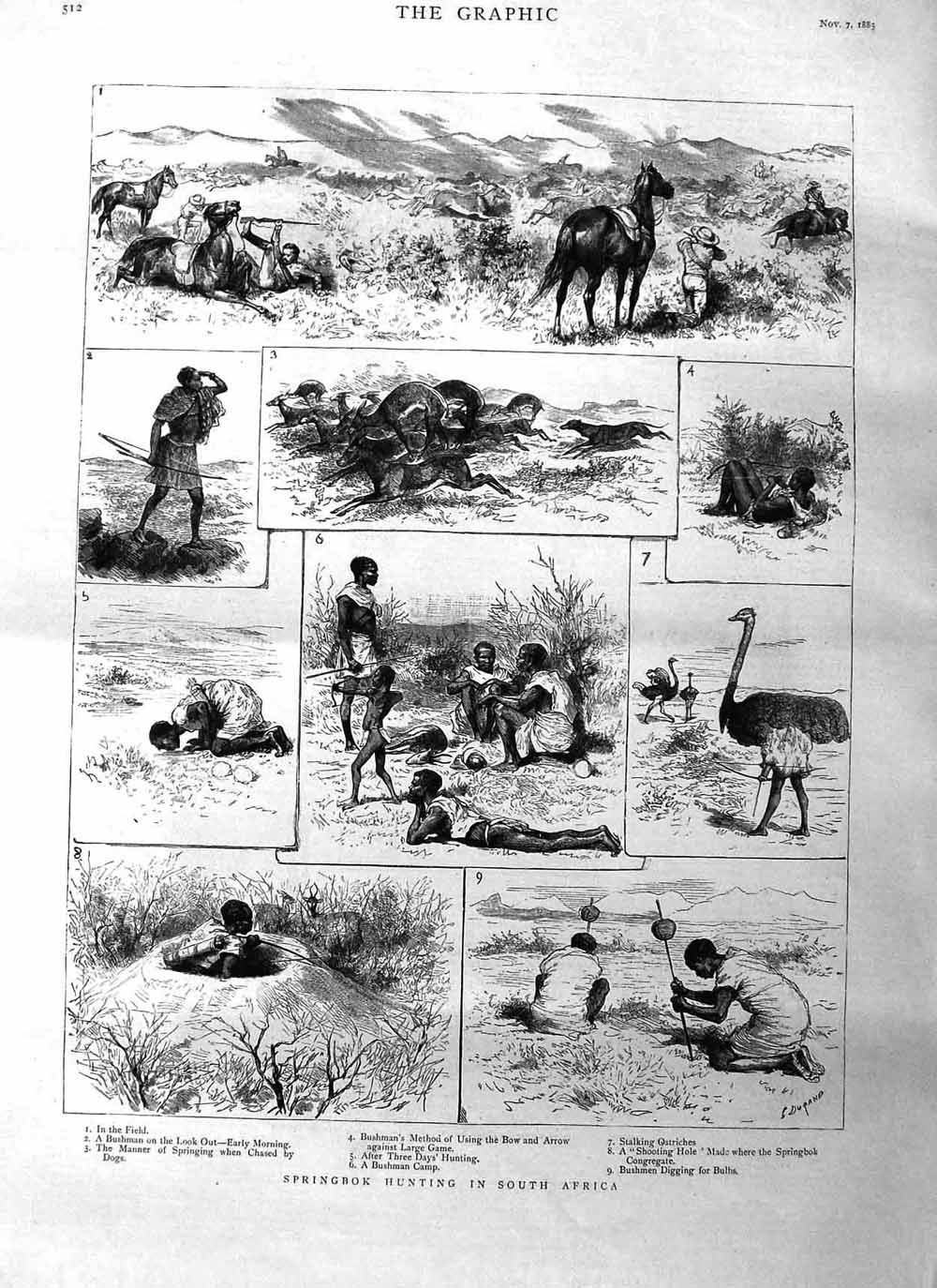 [Print 1885 Springbok Hunting South Africa Natives Ostrich 512M132 Old Original]