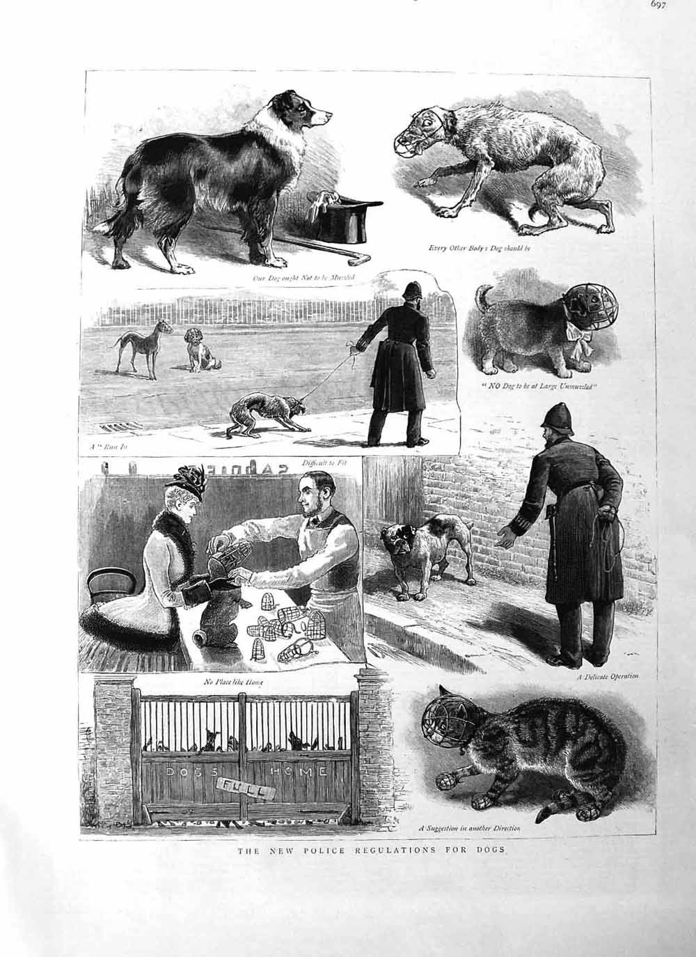 [Print 1885 Police Regulations Dogs Home Cat Muzzle Policeman  Old Original]