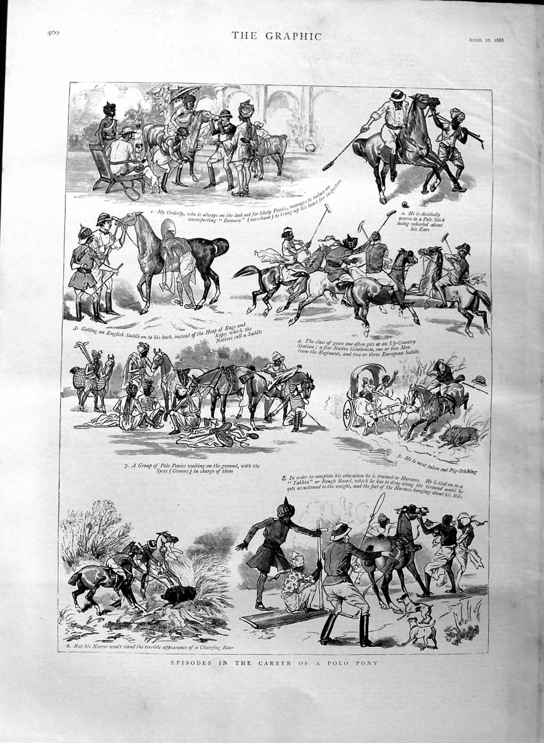 [Print 1886 Polo Pony Natives Hunting Sport Dogs  Old Original]