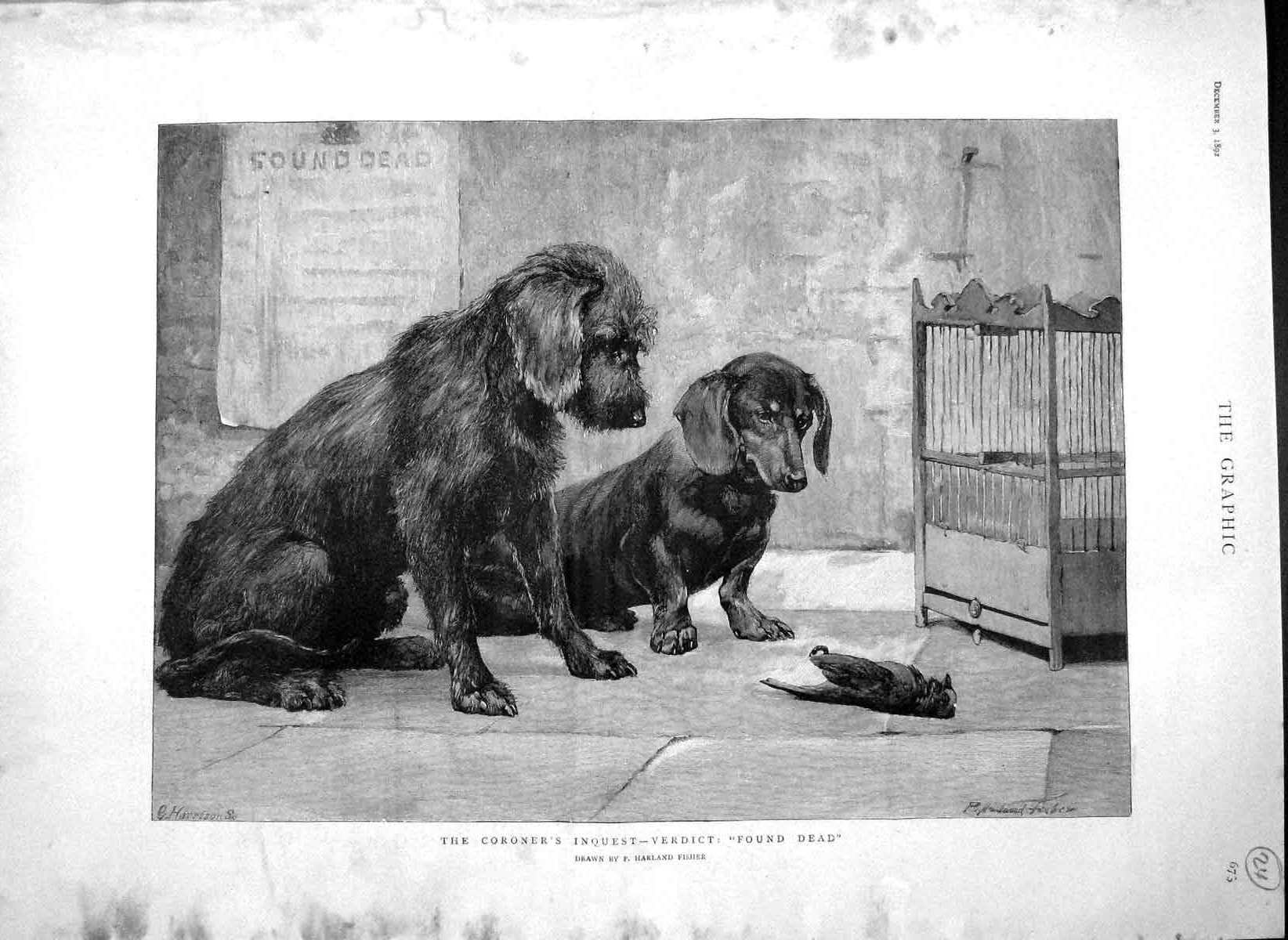 [Print 1892 Dead Bird Cage Puppy Dogs Harland Fisher Fine Art Old Original]