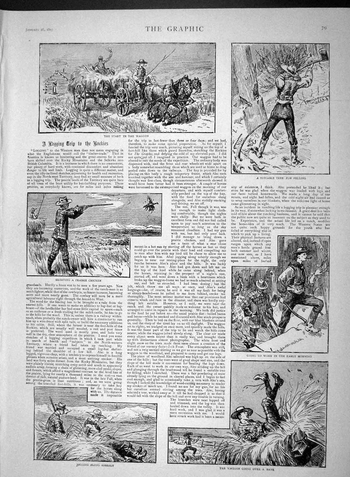 [Print 1893 Hunting Rocky Mountains Shooting Prairie Chicken 079M147 Old Original]