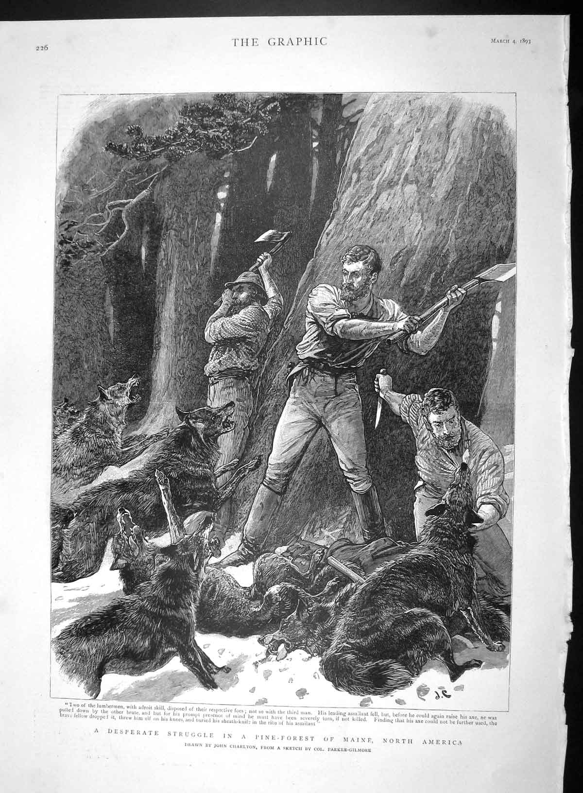 [Print 1893 Lumbermen Attacked Wild Dogs Pine Forest Maine 226M147 Old Original]