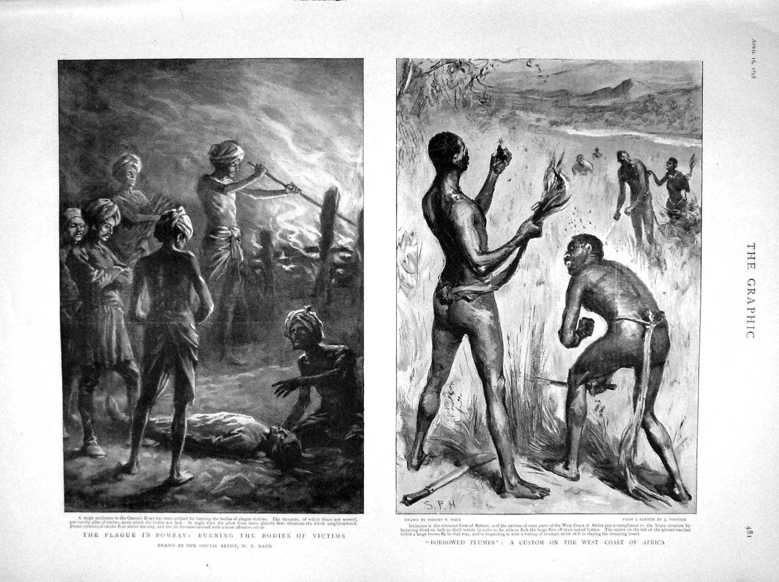 [Print 1898 Plague Bombay Burying Bodies Africa Natives 481M157 Old Original]
