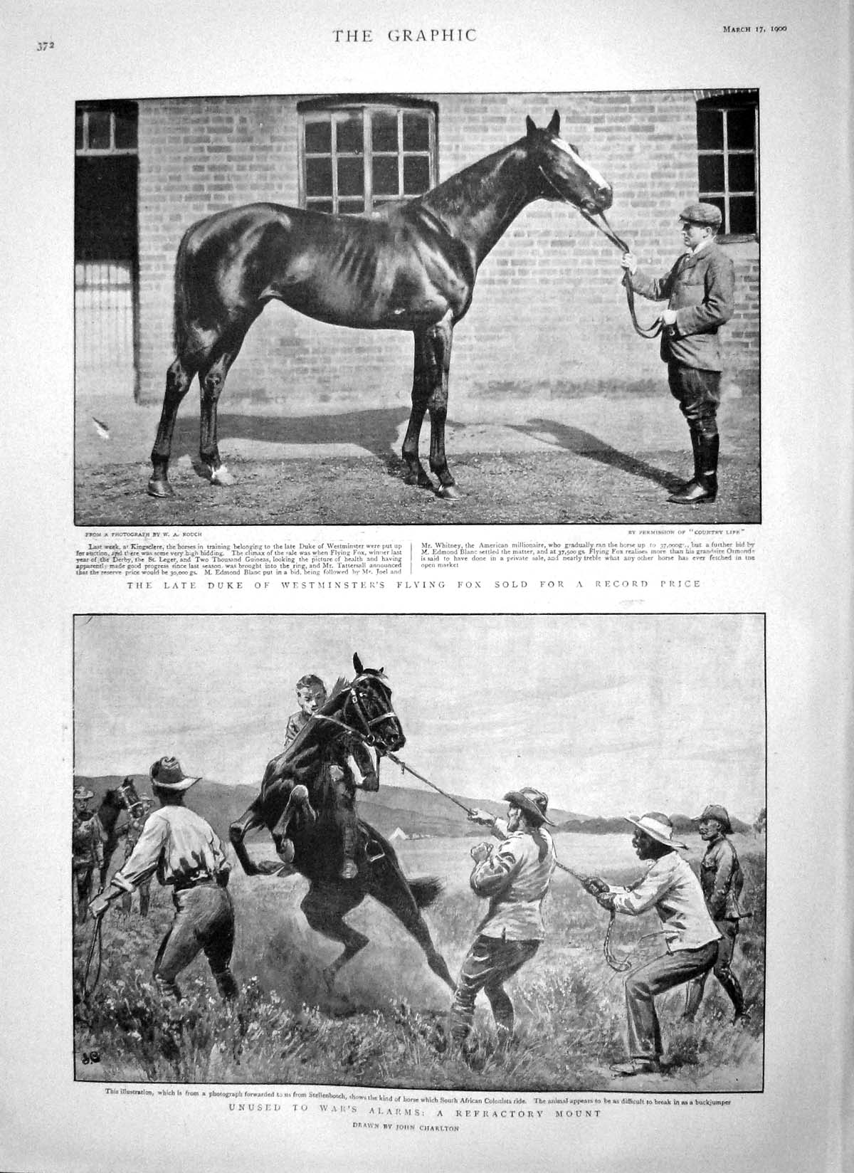 [Print 1900 Duke Westminster Flying Fox Horse Parliament Emile 372M161 Old Original]