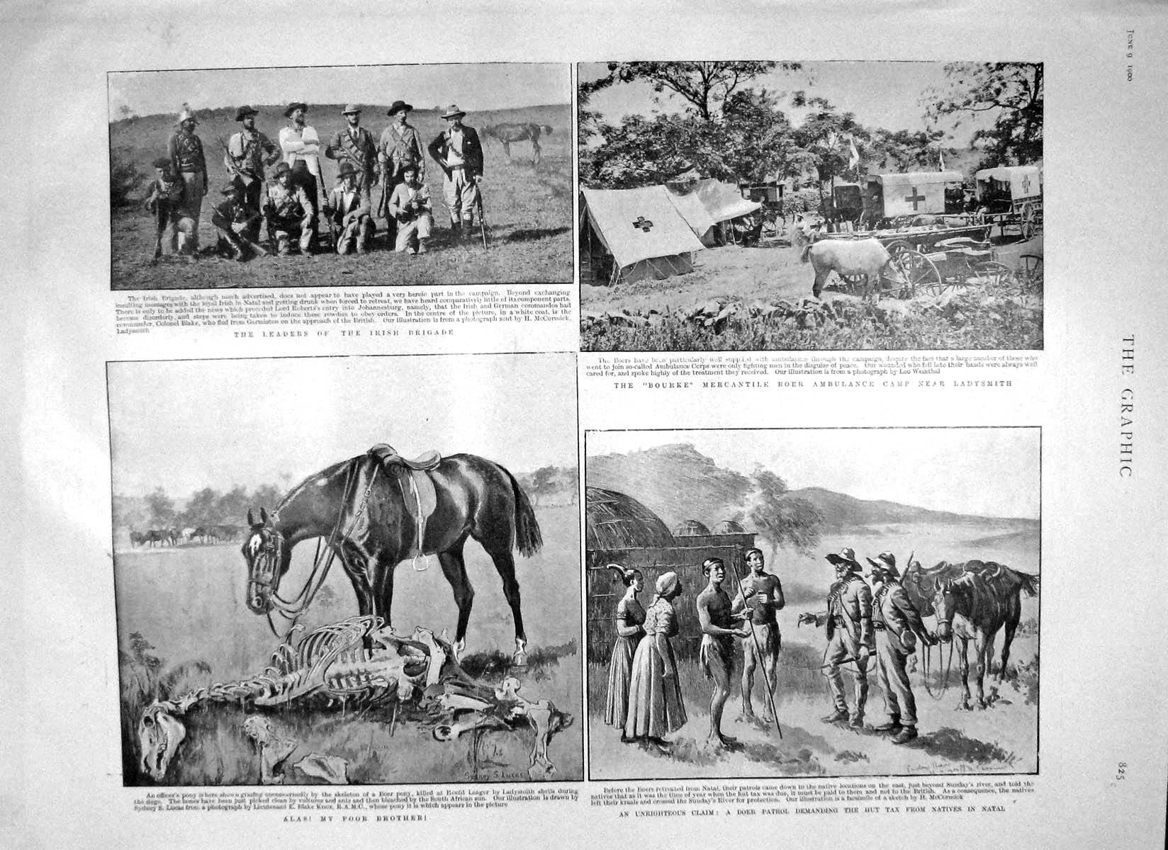 [Print 1900Irish Bourke Ladysmith Ambulance War Africa Roberts 825M161 Old Original]