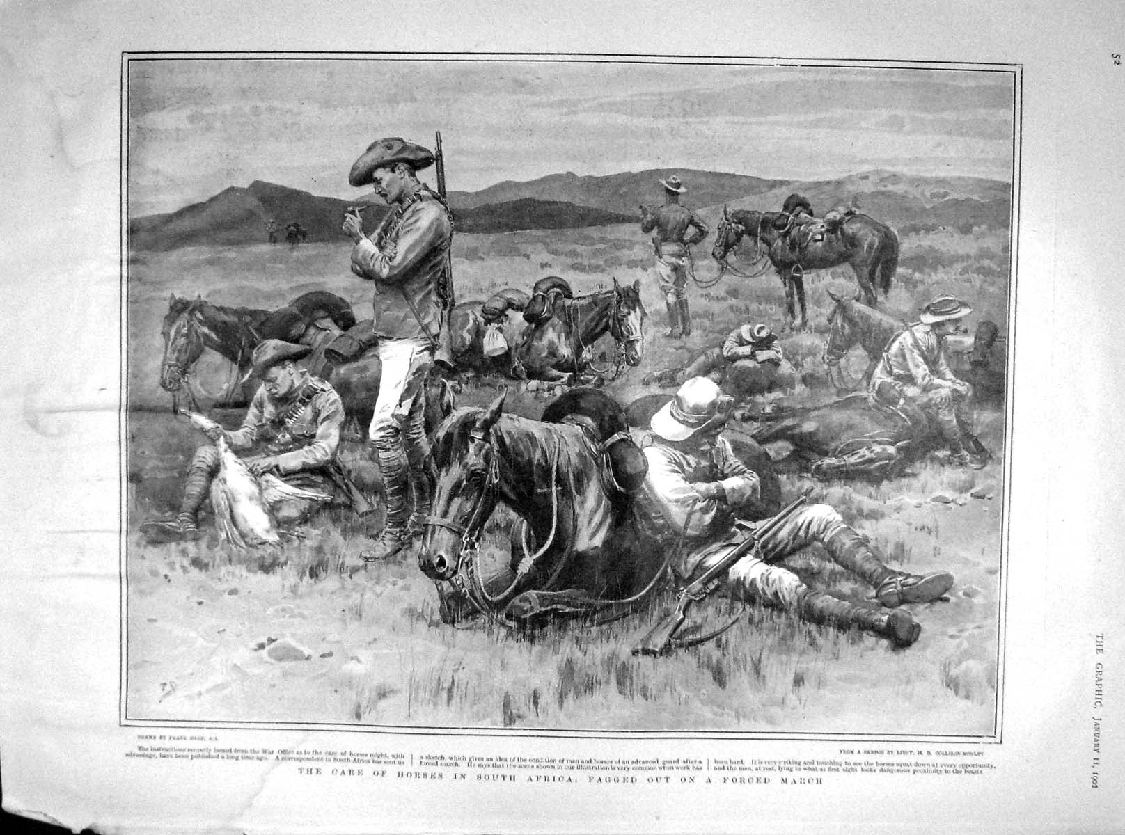 [Print 1902 Horses South Africa Soldiers War Officers 052M165 Old Original]