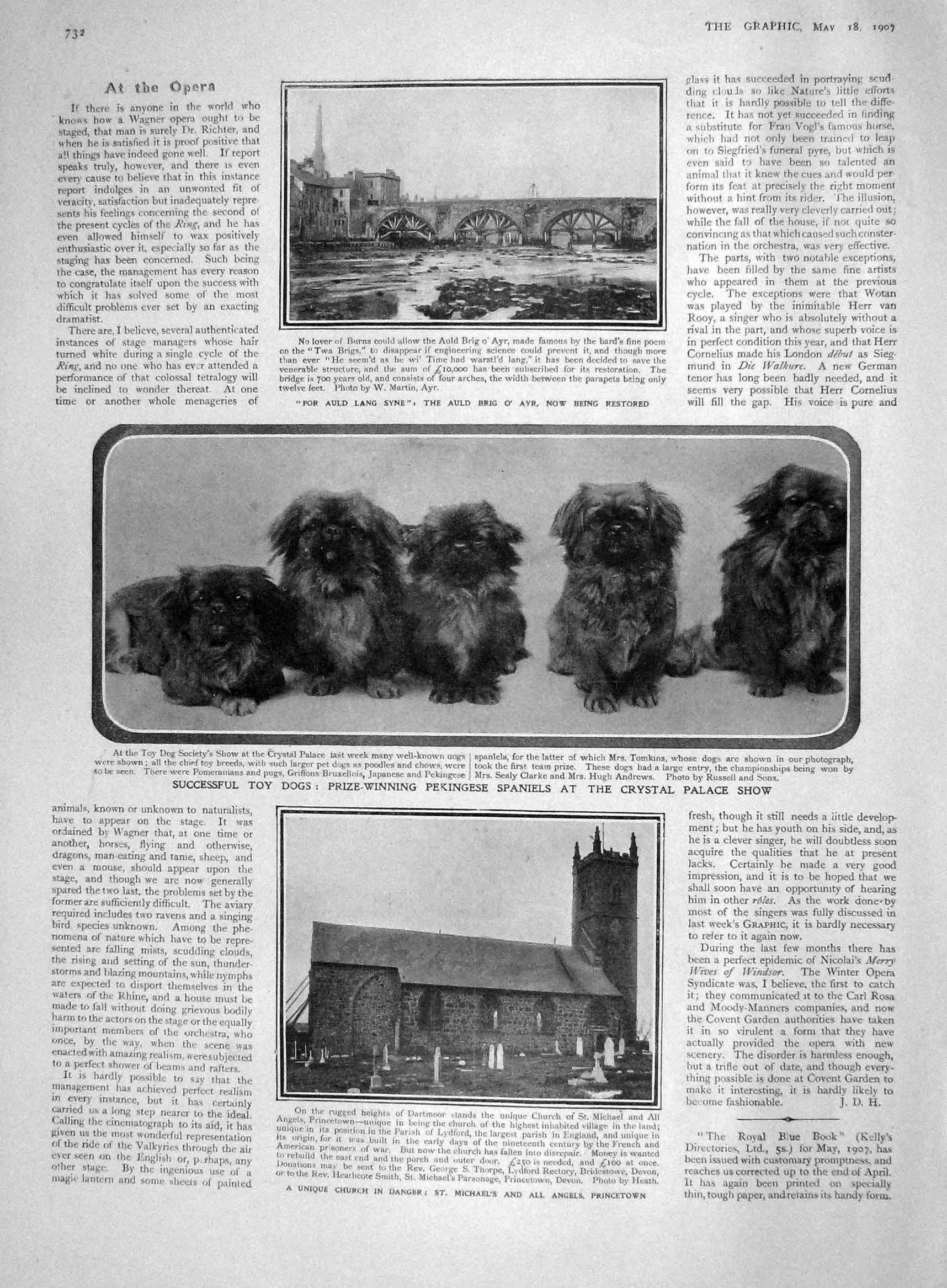 [Print 1907 Toy Dogs Pekingese Church Michael'S Prince Fushimi 732M175 Old Original]