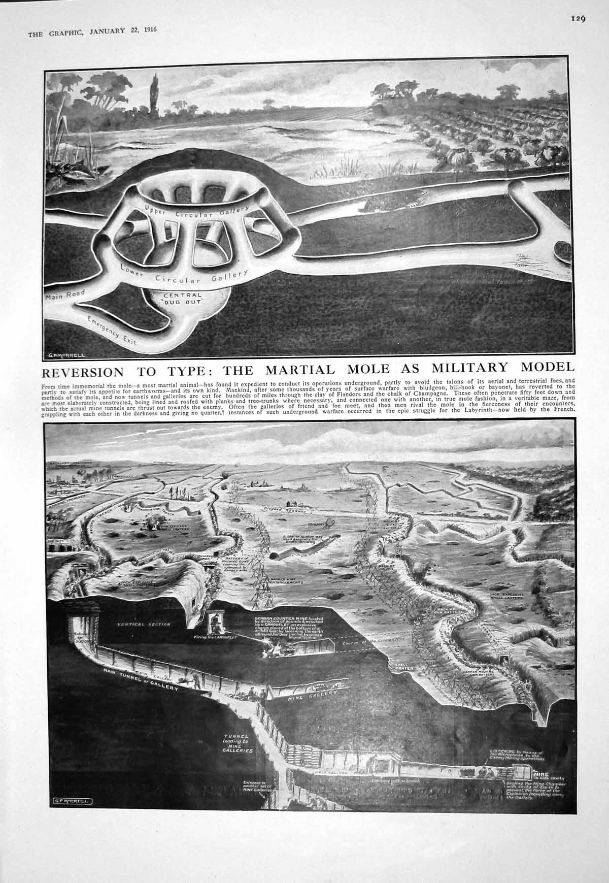 [Print 1916 Martial Mole Military Model Trenches War Wright Kemball Hent 129M193 Old Original]