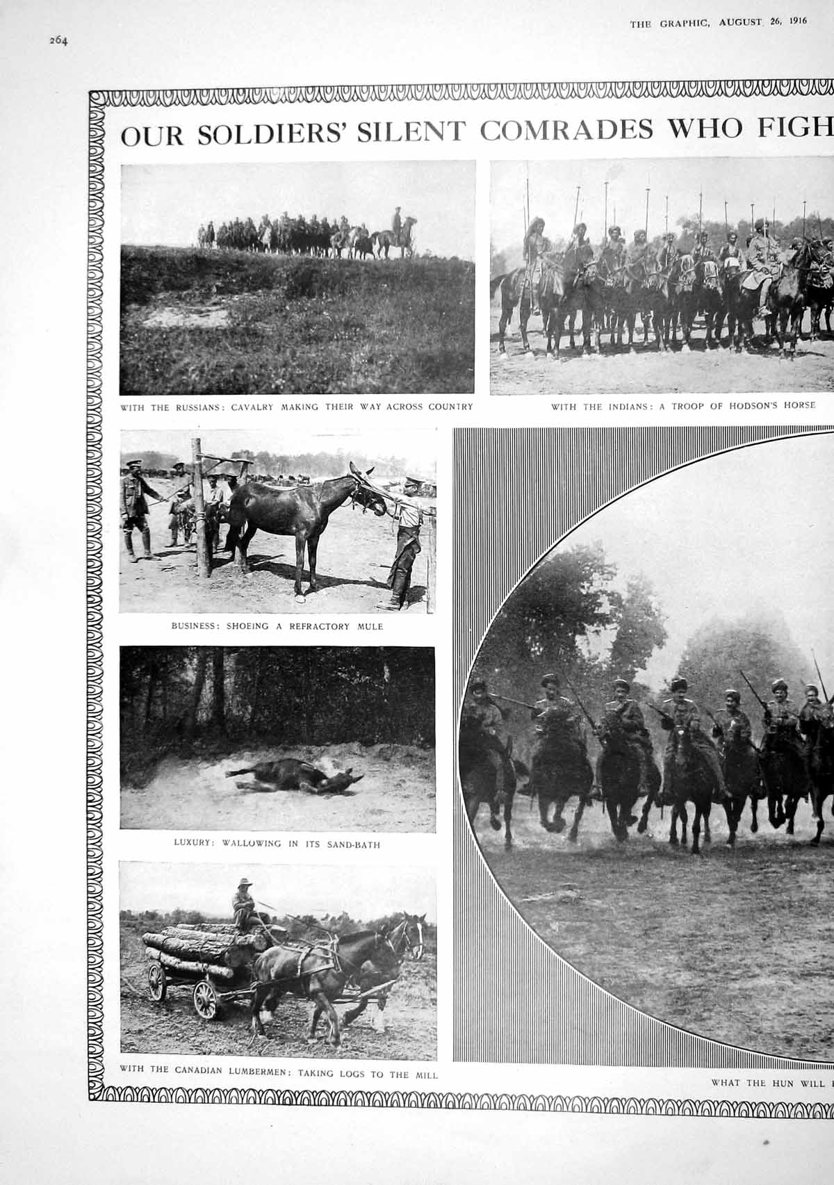[Print 1916 War Soldiers Indians Russiand Horses Cavalry Camp Hospital L 264M194 Old Original]