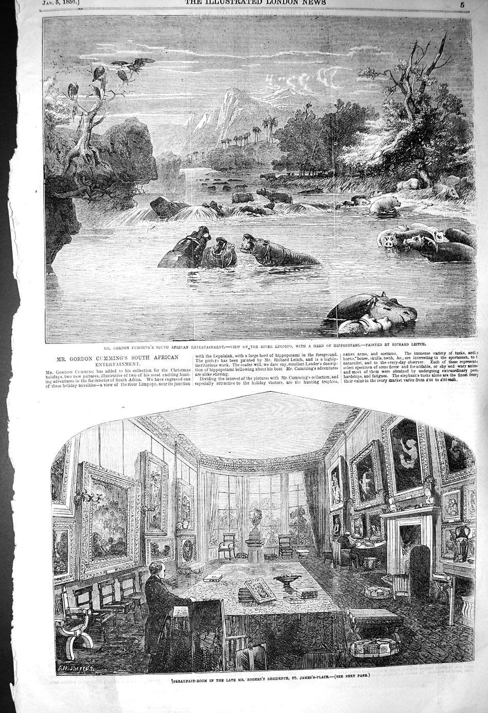 [Print 1856 Cumming Africa Limpopo Hippopotamus James Palace 005P128 Old Original]