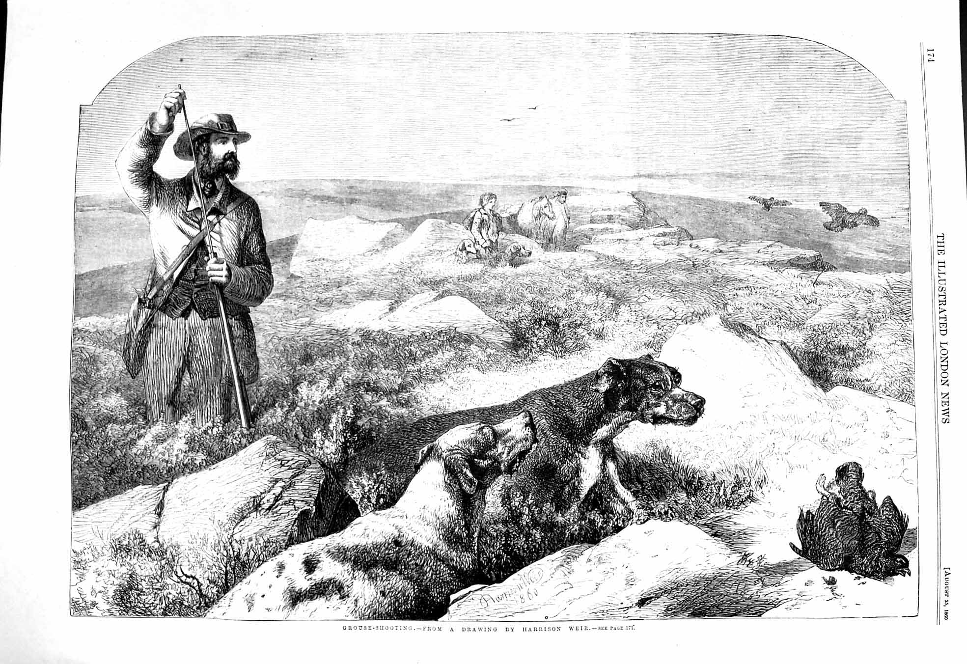 [Print 1860 Grouse Shooting Hunting Hounds Dogs Huntsman 174P137 Old Original]