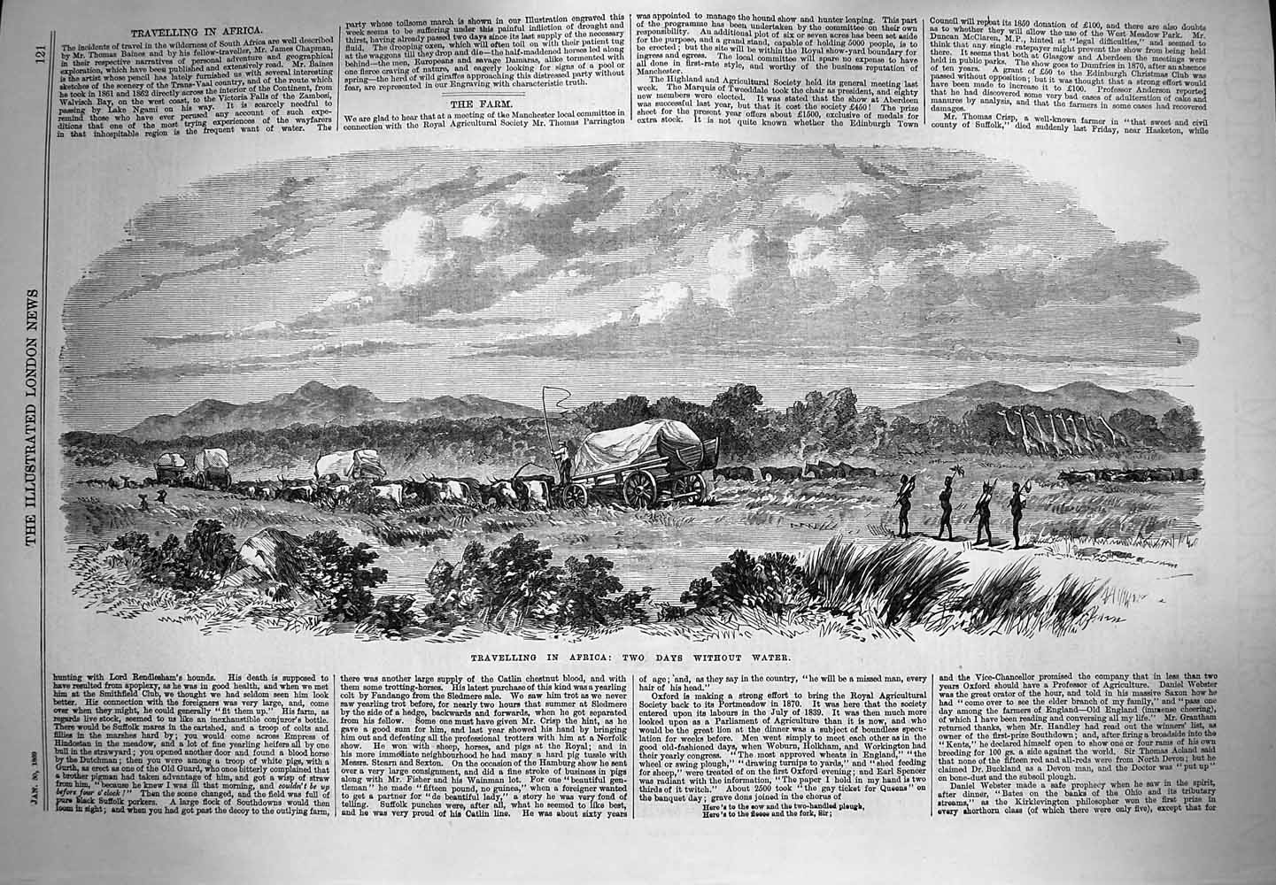 [Print 1869 Travelling Africa Cattle Waggon Chapman Baines 121P154 Old Original]