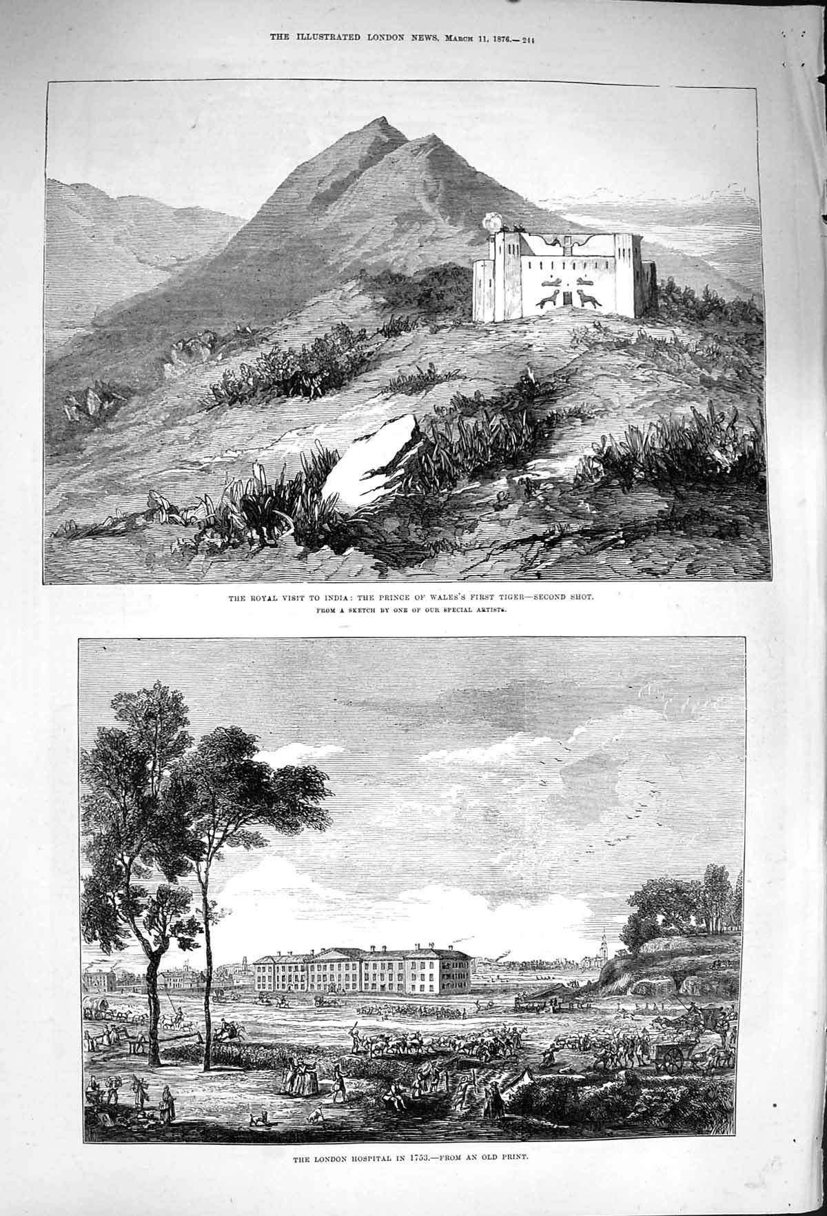 [Print 1876 India Prince Wales Tiger Hunting London Hospital 244P168 Old Original]
