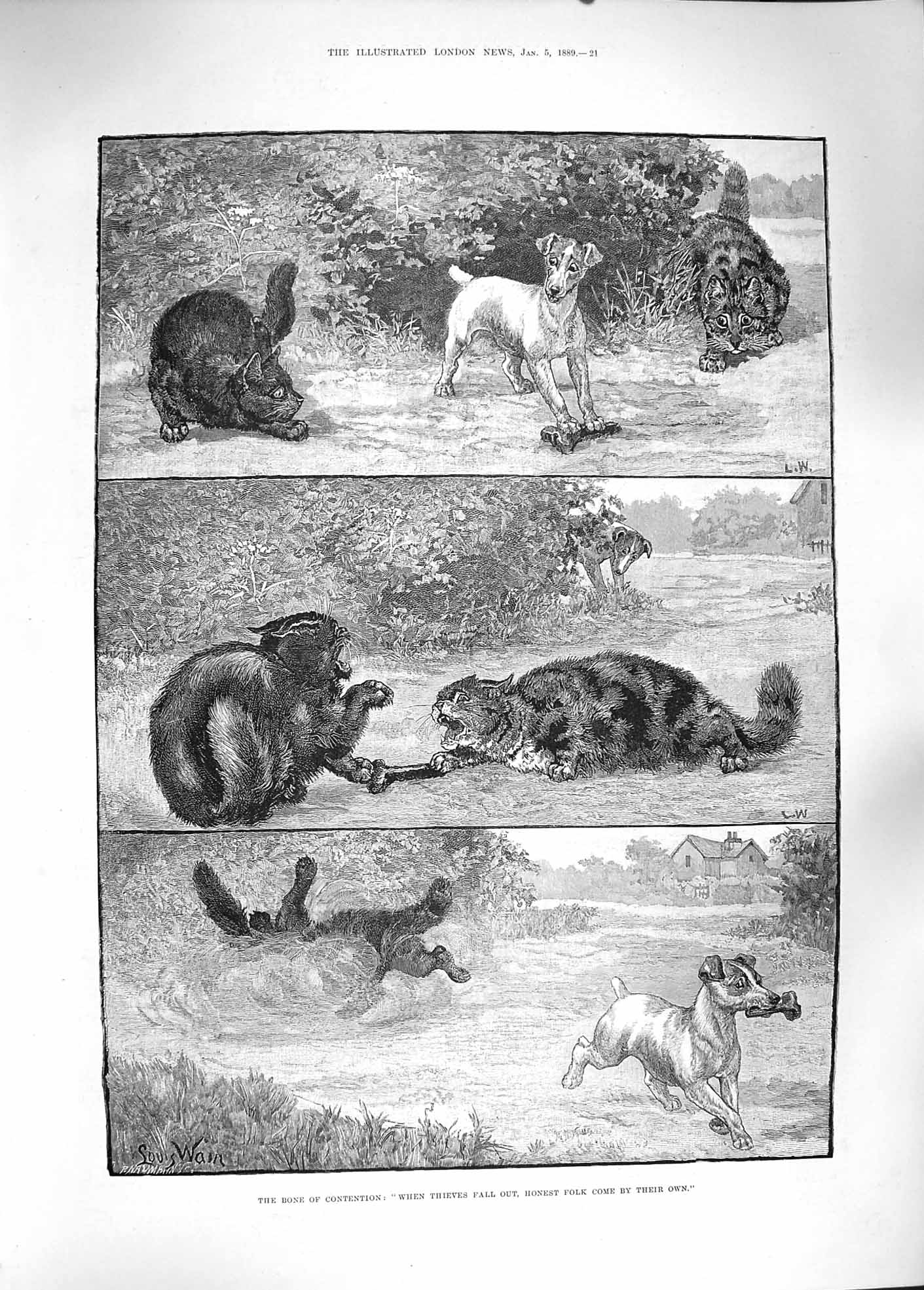 [Print 1889 Bone Contention Dogs Cats Fighting Bone Animals  Old Original]