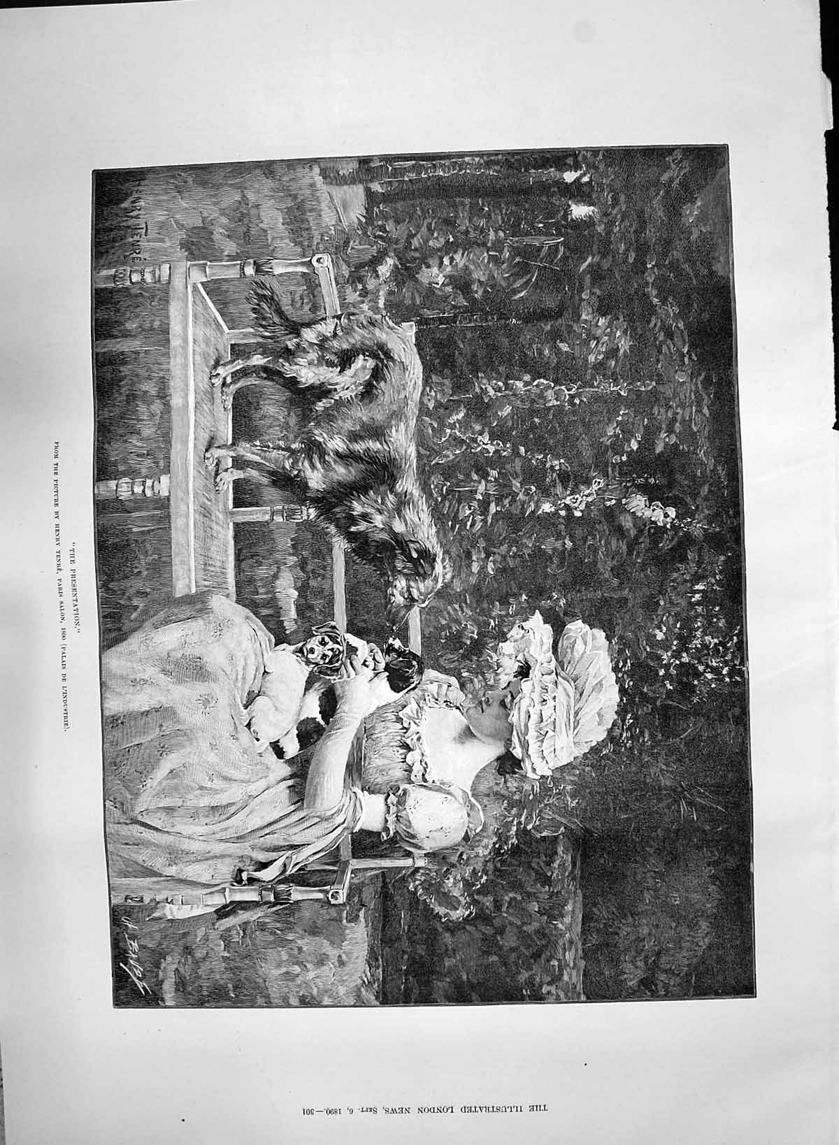 [Print 1890 Presentation Young Woman Puppy Dogs Pets Henry Tenre 301P197 Old Original]