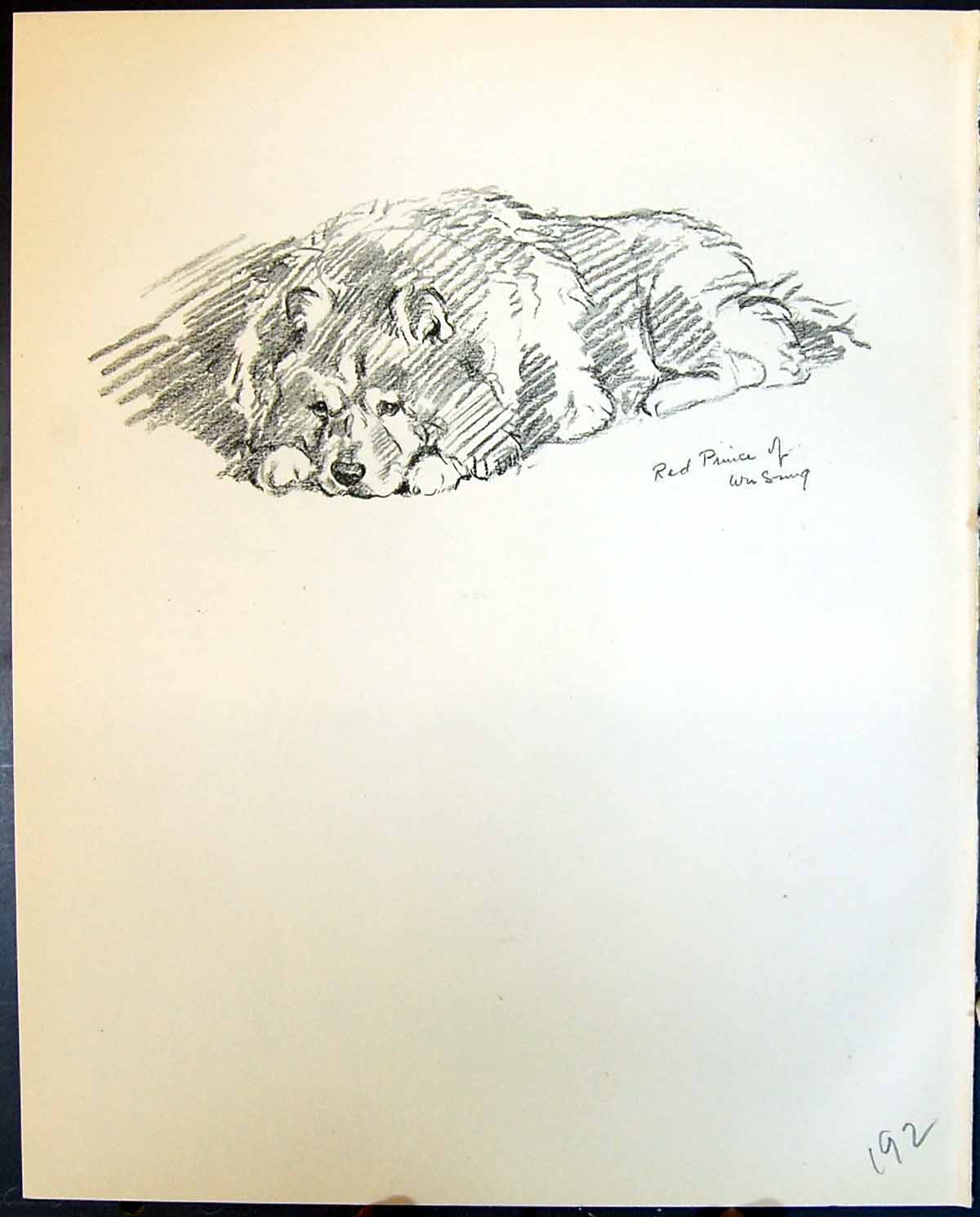 [Print Red Prince Wu Sung Lalli Pet Dogs Animals Lucy Dawson 1936 192G344 Old Original]