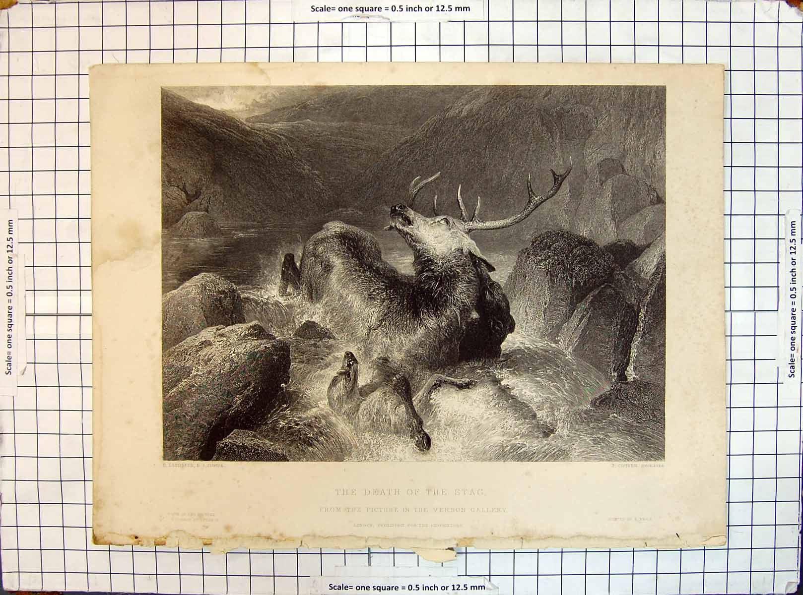 [Print Engraving Death Stag Attacked Dog Hunting River Scene Cousen Land 159G358 Old Original]