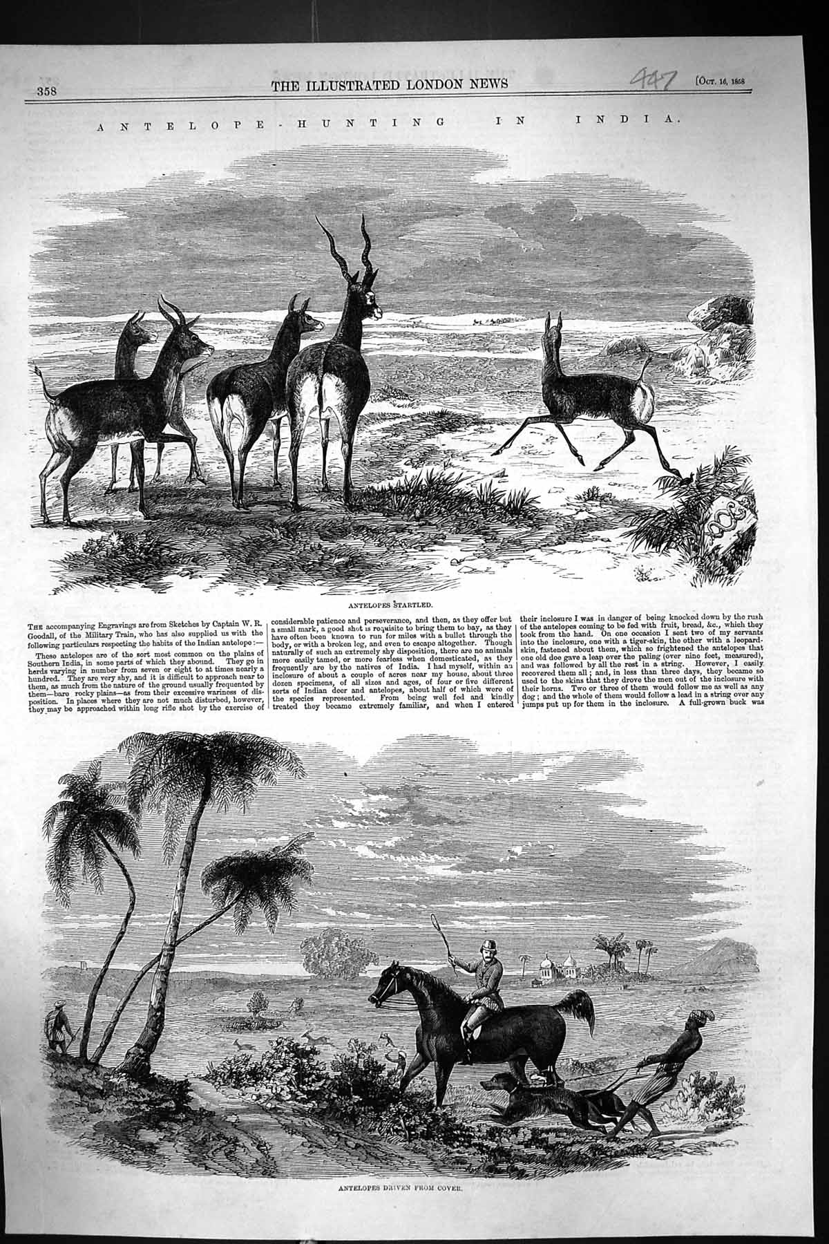[Print 1858 Antelope Hunting India Sport Huntsmen Horses Hounds Dogs 447J305 Old Original]