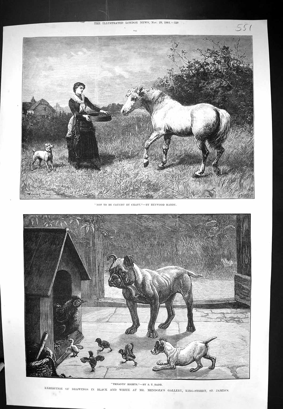 [Print 1884 Exhibition Drawings Mendoza Gallery Dogs Kennel Chickens Hor 551J317 Old Original]