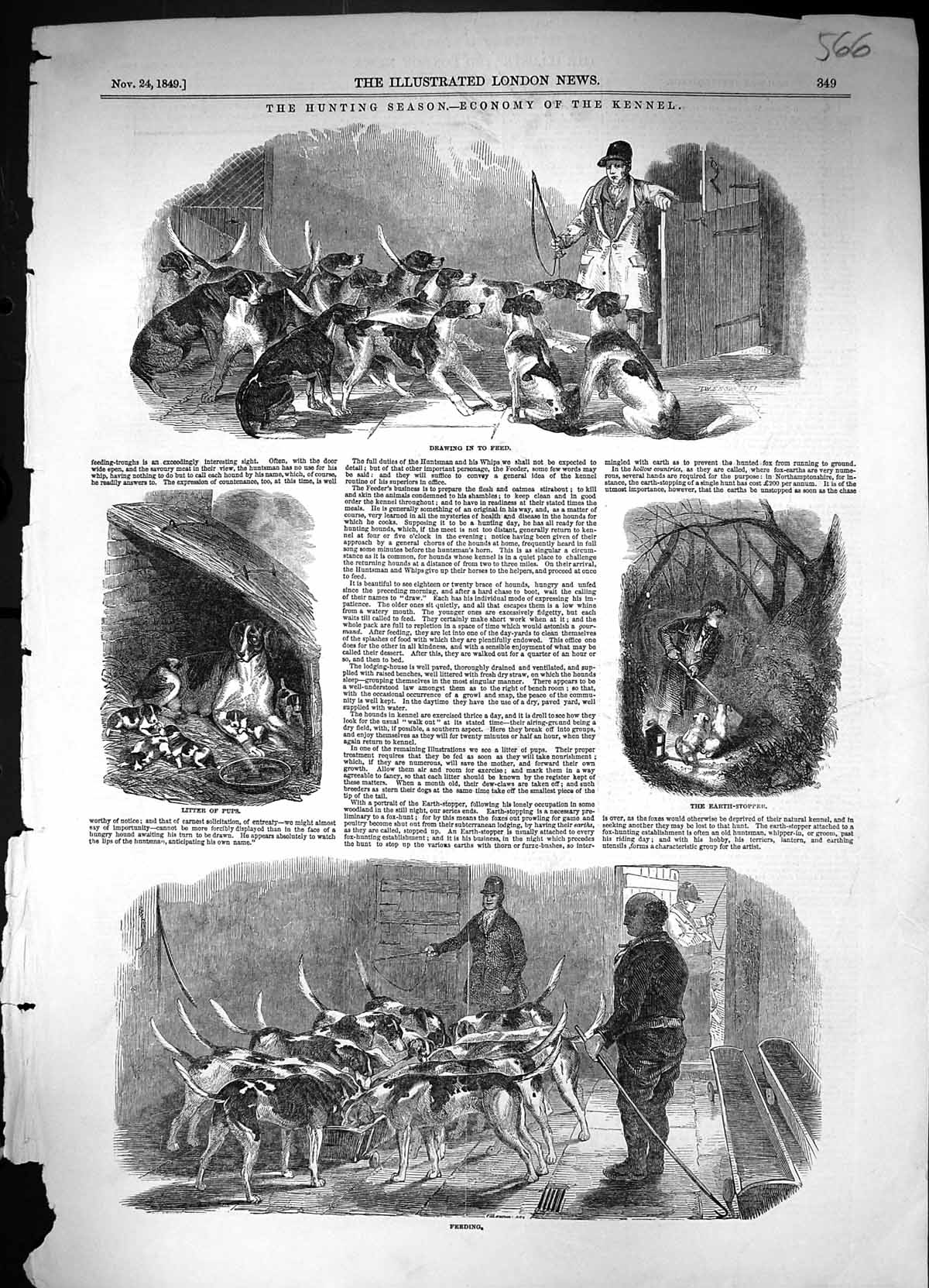 [Print 1849 Hunting Kennel Dogs Hounds Litter Pups Earth-Stopper Sport A 566J320 Old Original]