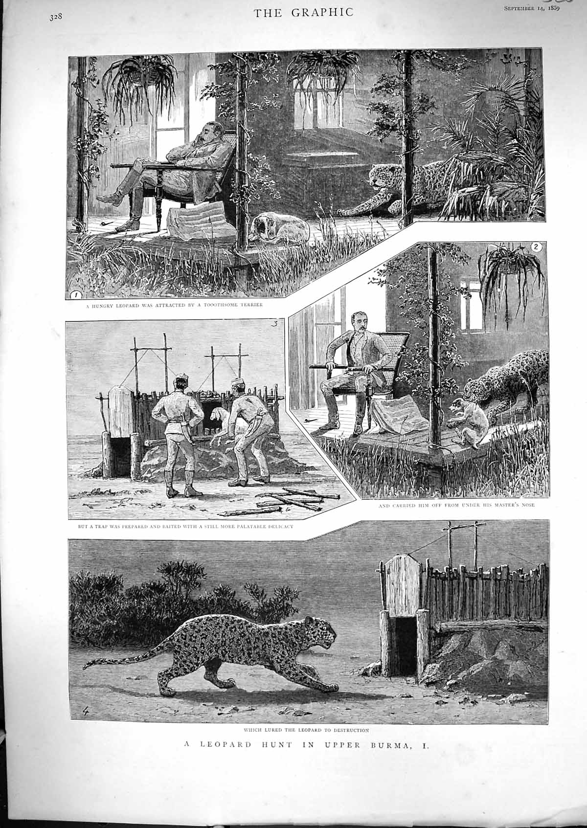 [Print 1889 Leopard Hunting Burma Sport Man Sleeping Dog Goat Bait 520J329 Old Original]