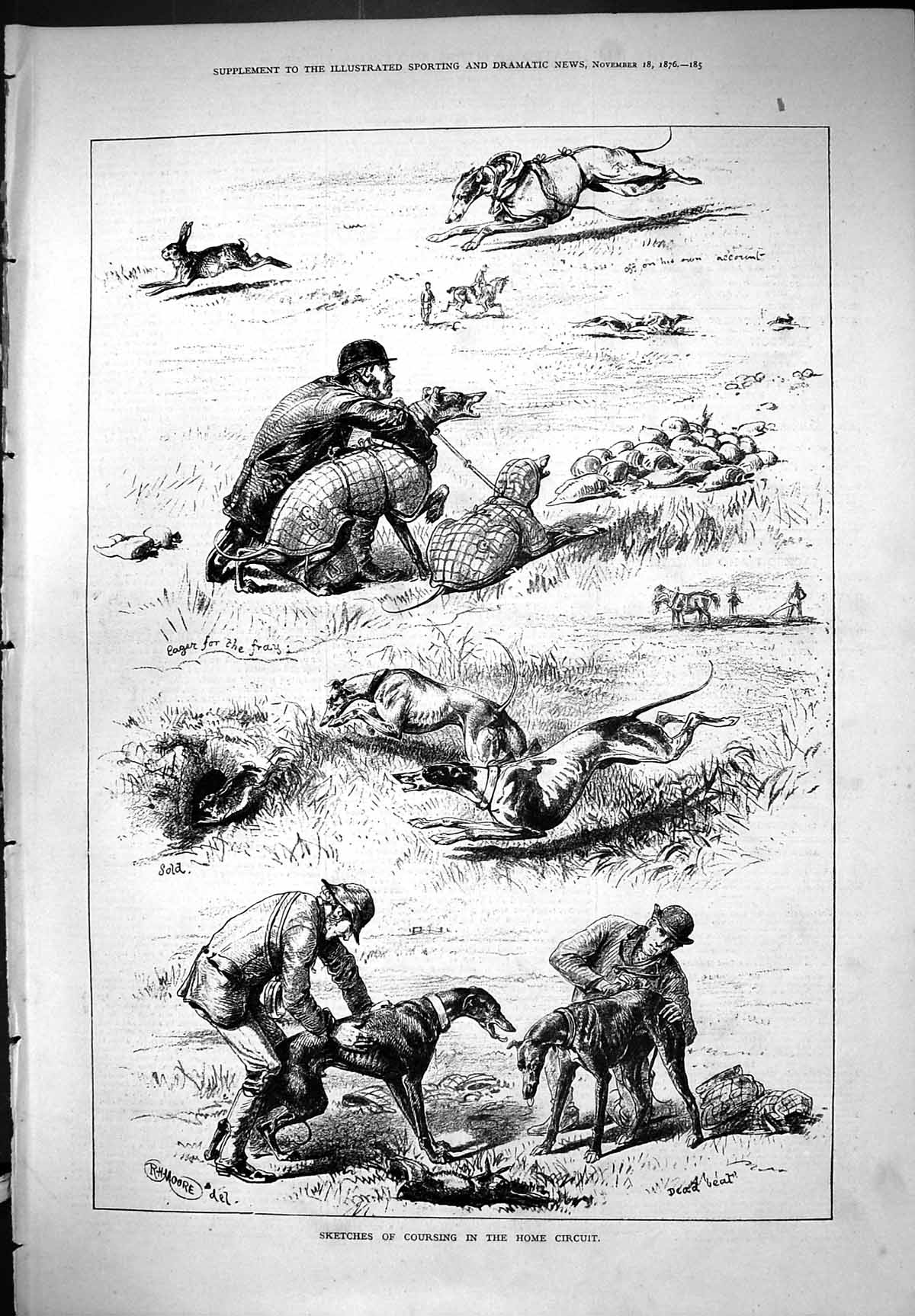 [Print Coursing Sketches Home Circuit Dogs Hounds Hare Sport 1876 Moore 185J406 Old Original]