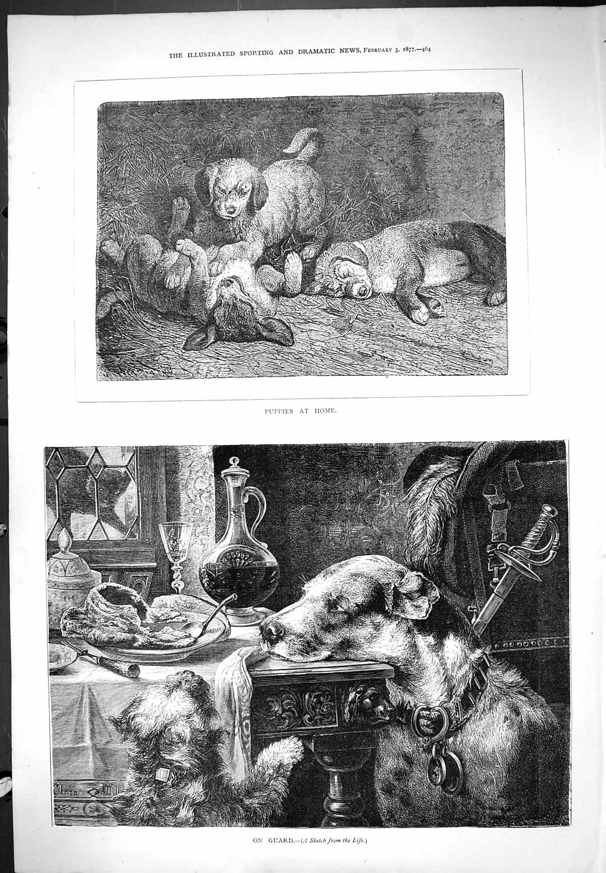 [Print 1877 Puppies At Home Dogs Pets Animals On Guard 464J406 Old Original]
