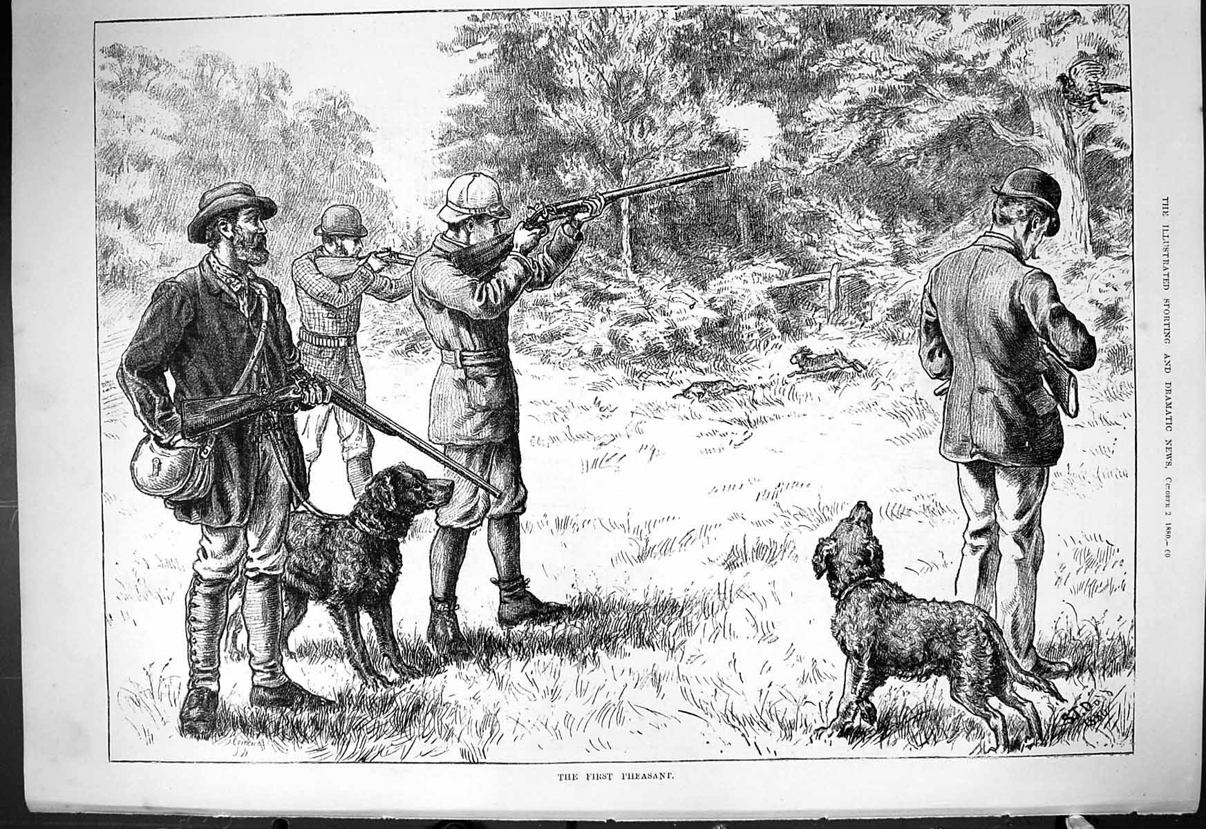 [Print 1880 First Pheasant Hunting Shooting Birds Hounds Dogs 060J414 Old Original]