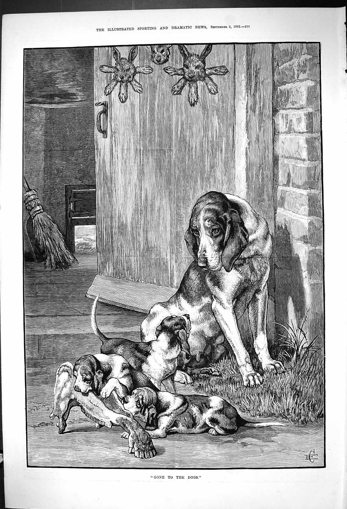 [Print 1882 Puppy Dogs Hunting Hounds Chewing Horse Bone 596J417 Old Original]