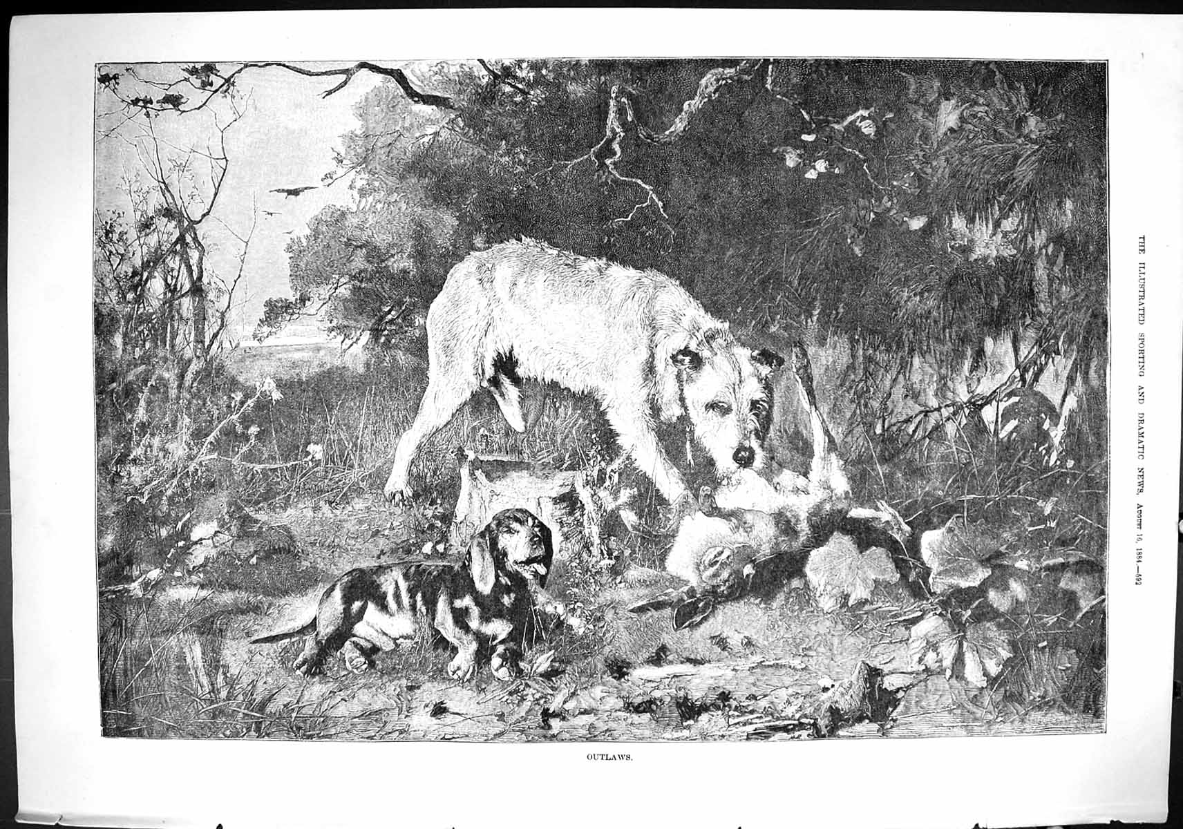 [Print Sporting Dramatic News 1884 Fine Art Hounds Dogs Hare Hunting Spo 592J421 Old Original]