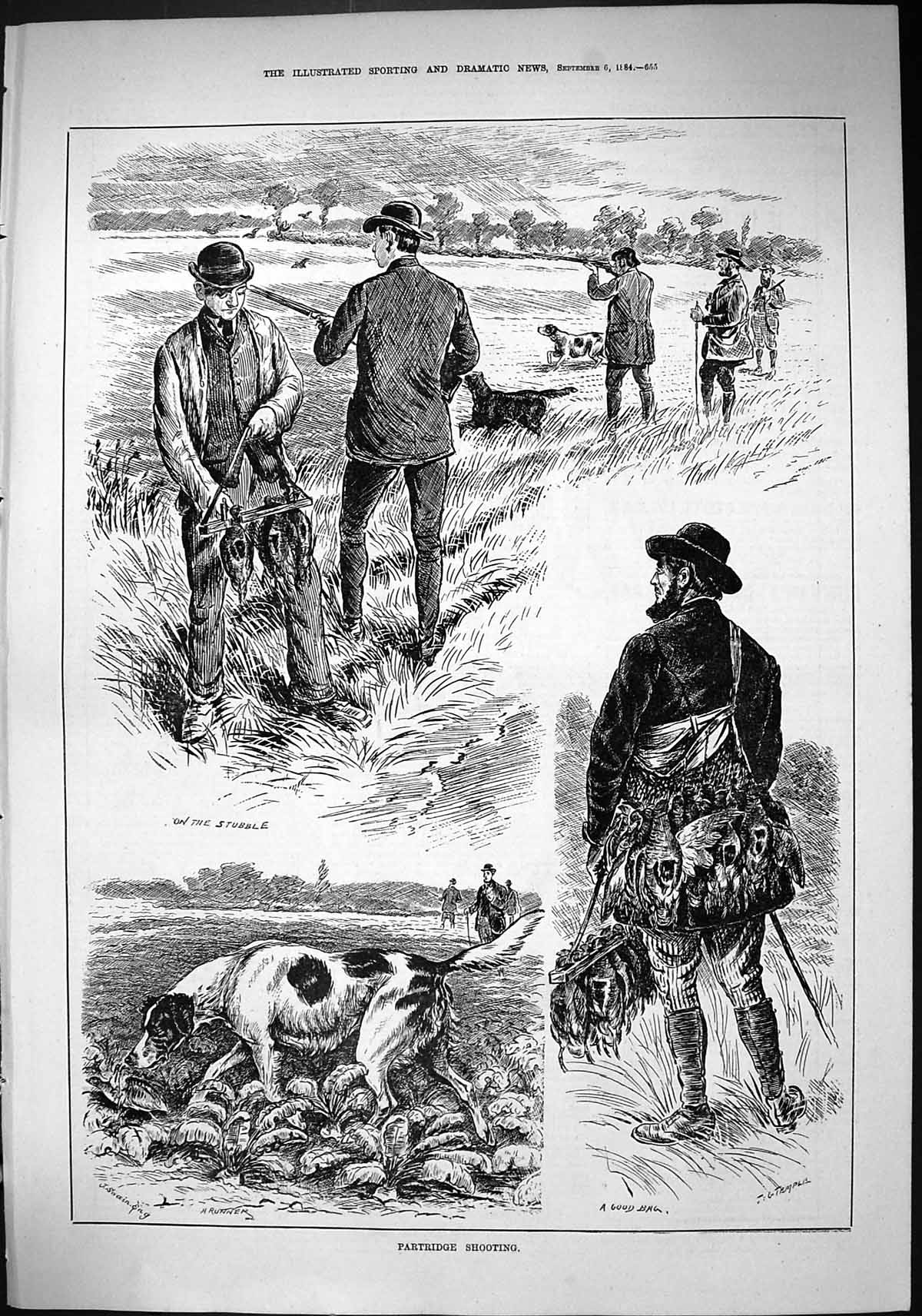 [Print Sporting Dramatic News 1884 Patridge Shooting Hound Dogs Birds Hu 655J421 Old Original]