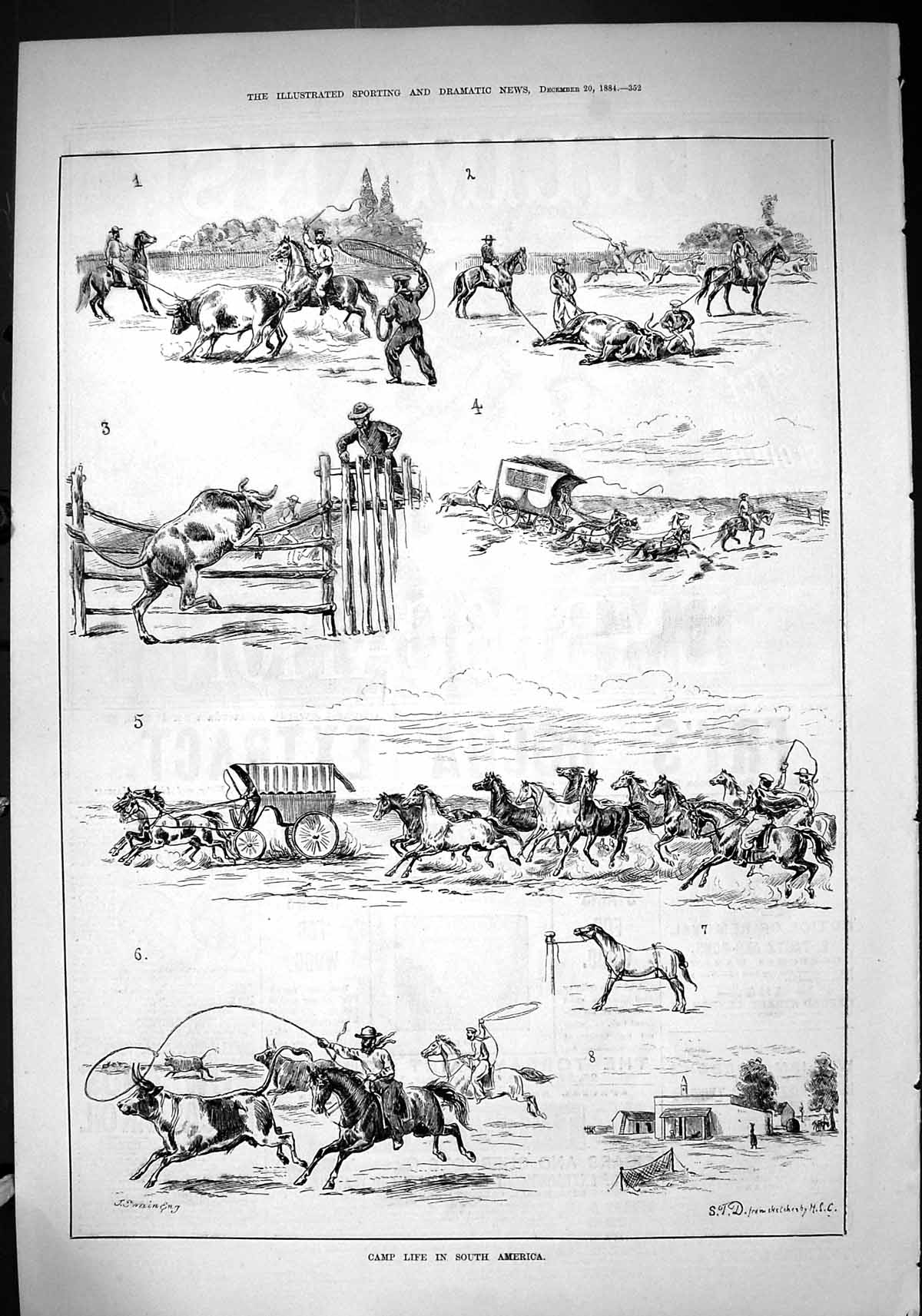 [Print 1884 Camp Life South Africa Cattle Horses Cowboys Transport 352J422 Old Original]